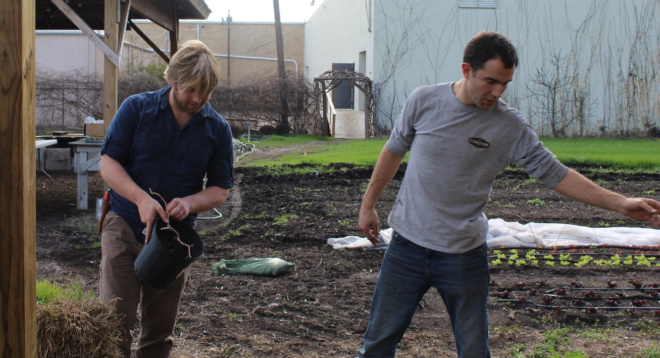 Keith Mearns (left) and Eric McClam of City Roots (right) planted Herbemont grape vines at City Roots earlier this year. Photo from City Roots.