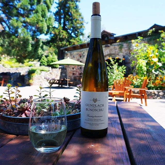 @gunbun's Gewürztraminer (say that 10 times fast) is one of our absolute favorite summer wines. Enjoying it on their patio is one of the best ways to spend a summer day. ⠀⠀⠀⠀⠀⠀⠀⠀⠀ We love that they have different options for tastings, including inside at the bar where you can check out tons of family portraits and outside on their huge patio under the olive trees. ⠀⠀⠀⠀⠀⠀⠀⠀⠀ Read all about our love for Gundlach Bundschu at winenotwinecpuntry.com #wnwc ⠀⠀⠀⠀⠀⠀⠀⠀⠀ ⠀⠀⠀⠀⠀⠀⠀⠀⠀ #winenot #winecountry #sonomacounty #bestwineriesinsonoma #gunbun #winetasting