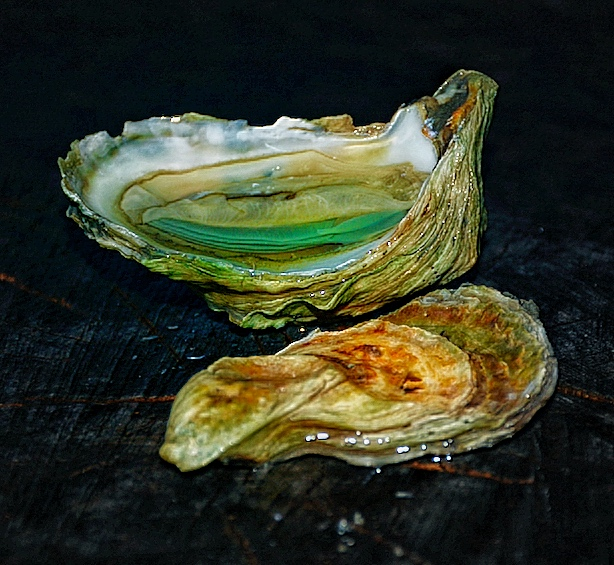 green oysters 1.jpg