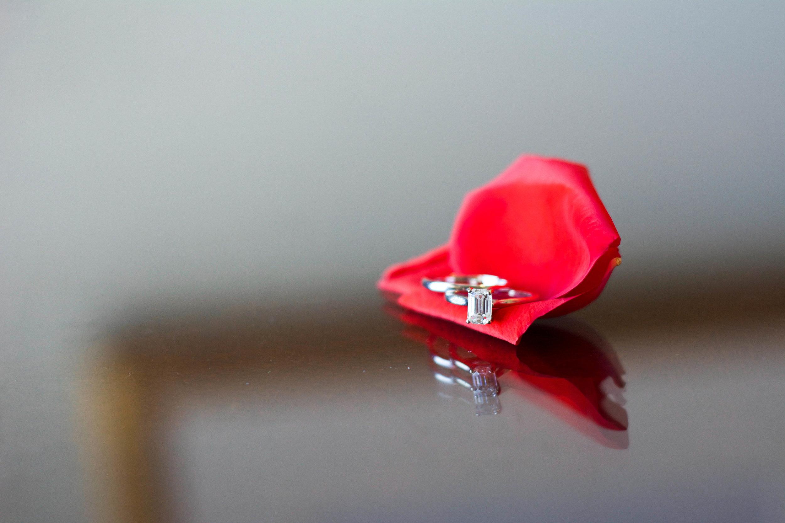 Ring shot.jpg