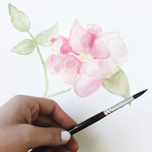 Warm weather + flowers + watercolors . {progress shot} #beckyfrancesart