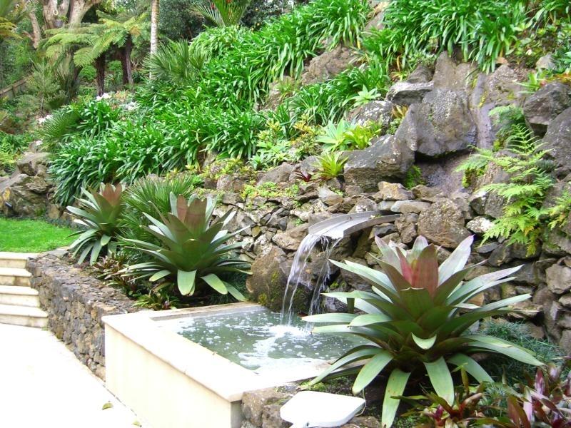 Water Feature and Garden.jpg