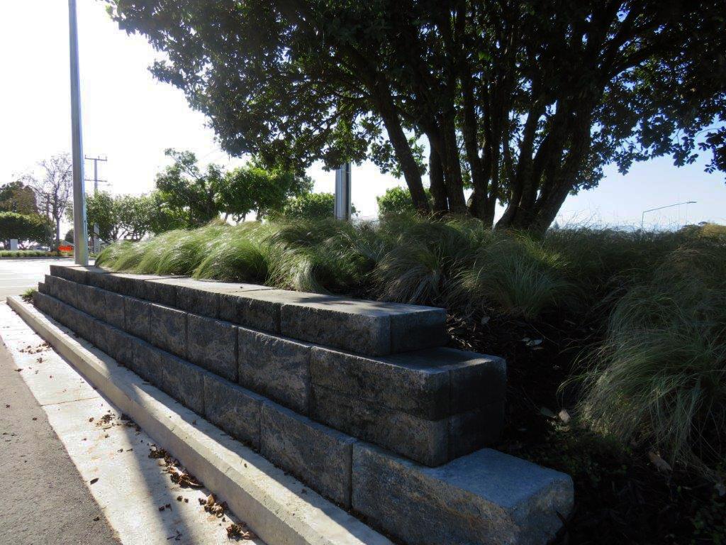 (5) Waterview School