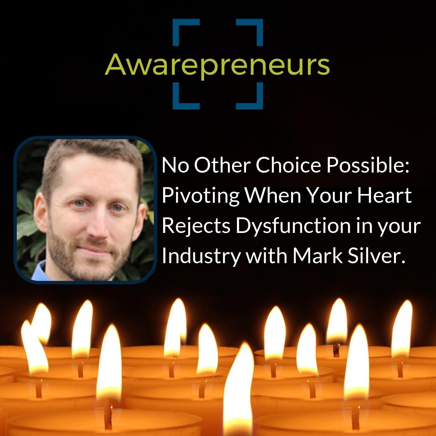 Mark Silver pivoting.jpg