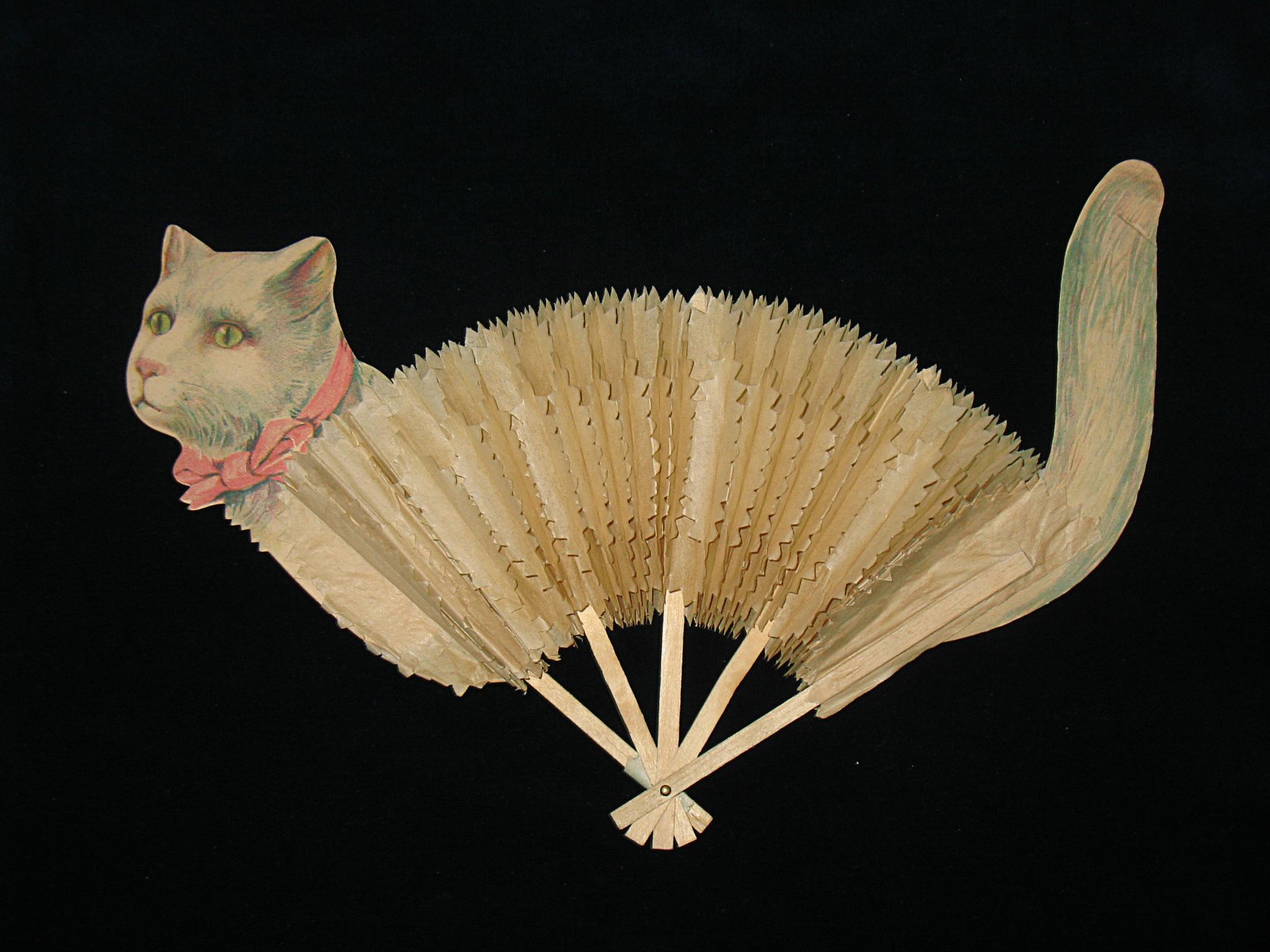 Animal_Cat1.jpg