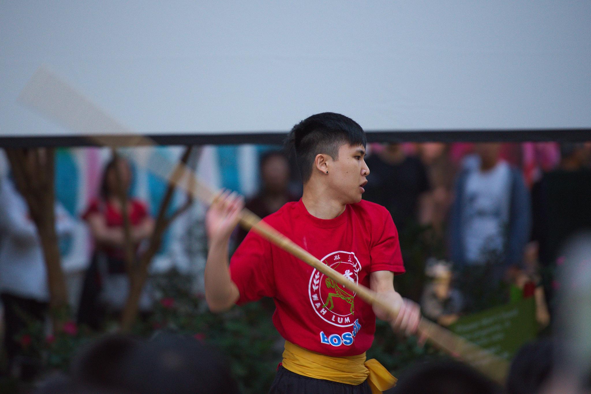 Martial Arts_Wah Lum Demonstration3.jpg