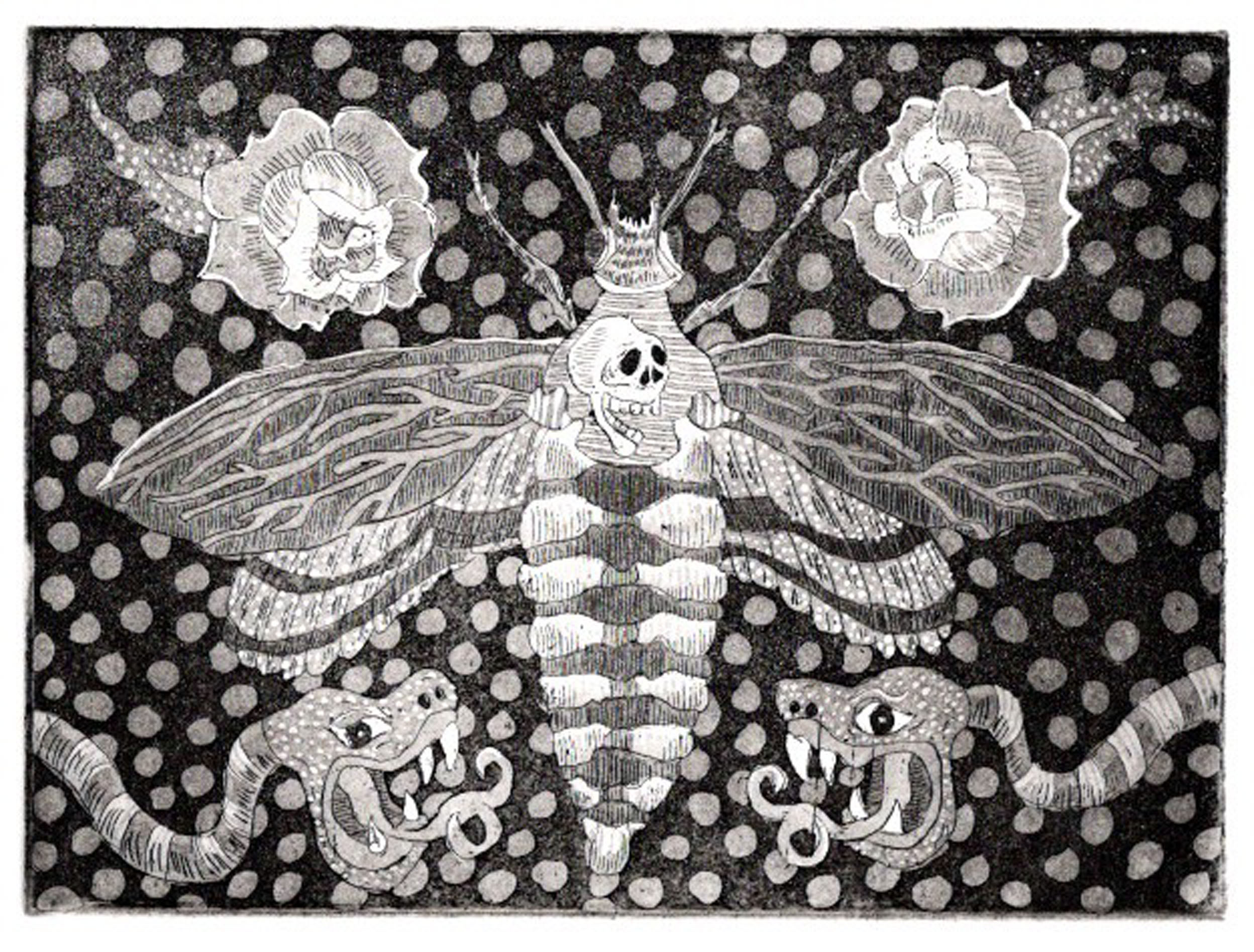 Death Head Moth.jpg