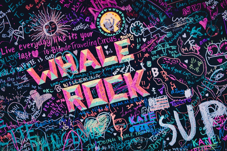 Whale Rock Music & Arts Festival '17 ~ James_054.jpg