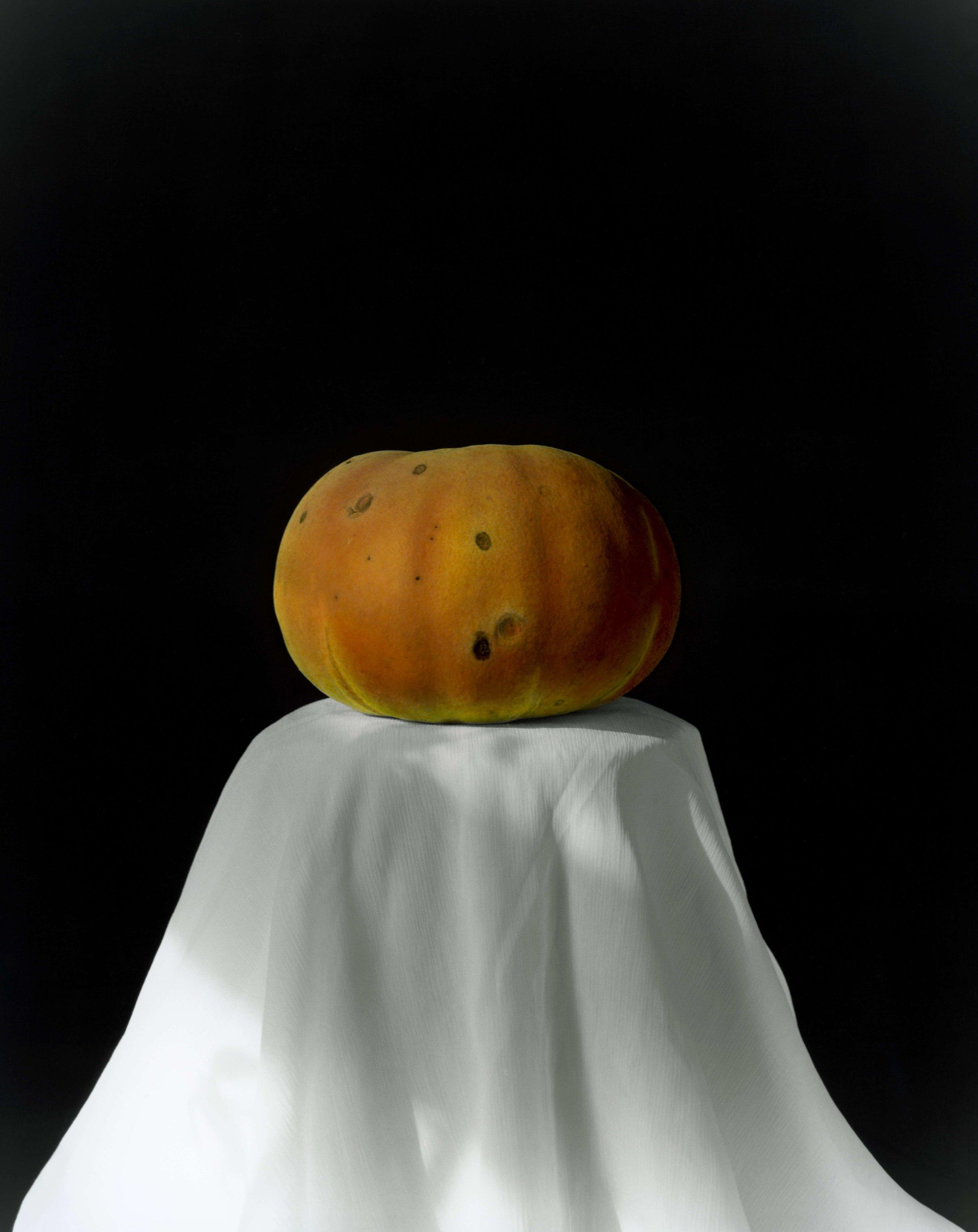 黄磊 南瓜 2008 (2-1)  明胶卤化银黑白照片,手工油彩着色 60.5×49.5 cm 2008  Huang Lei, Pumpkin 2008 (2-1), hand dyed with oil colour on gelatin silver print_compressed.jpg