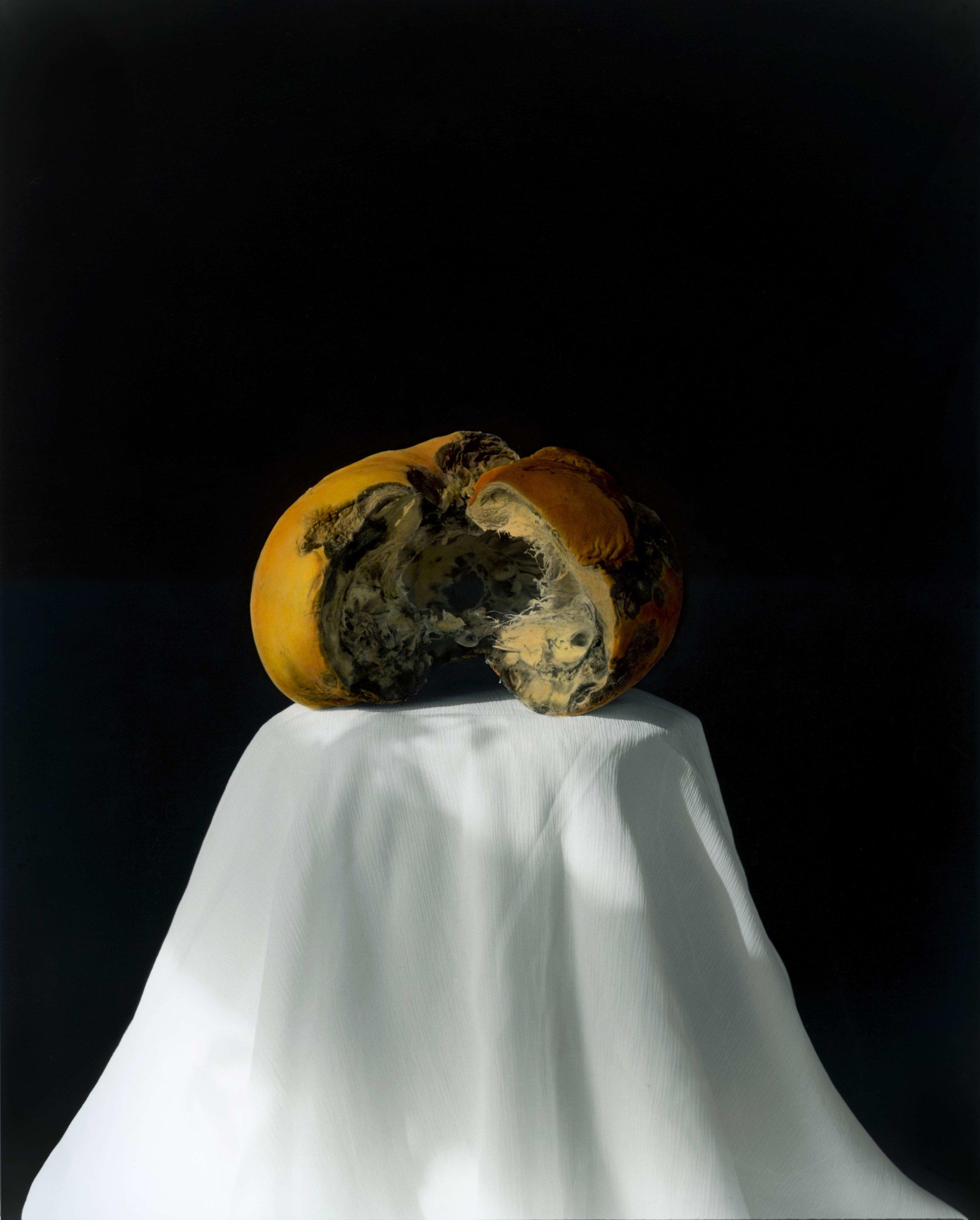 黄磊 南瓜 2008 (2-2)  明胶卤化银黑白照片,手工油彩着色 60.5×49.5 cm 2008  Huang Lei, Pumpkin 2008 (2-2), hand dyed with oil colour on gelatin silver print_compressed.jpg