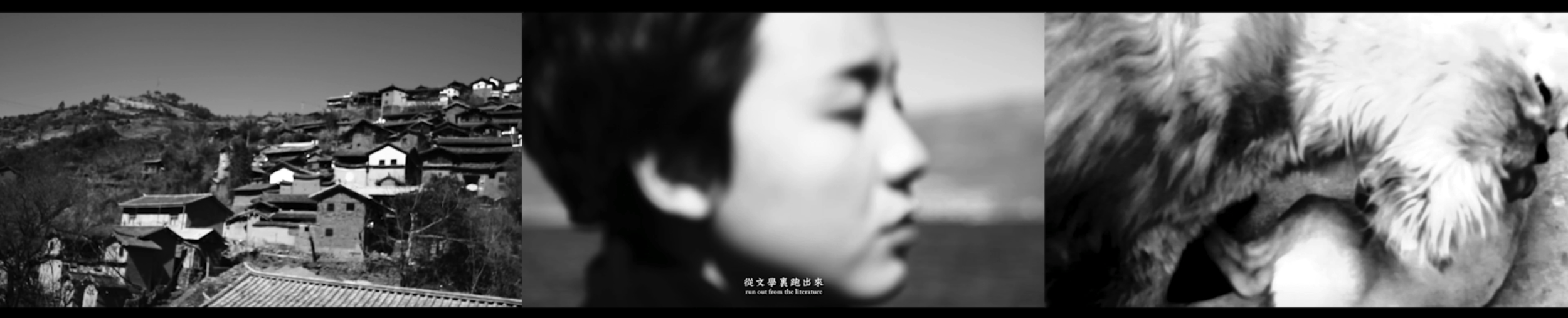 袁可如 Yuan Keru | 云龙绮梦 A Salted Entounter 三屏幕影像装置Three-screen video installation |时长 Duration 15m14s | 5+2AP | 2014-2.png