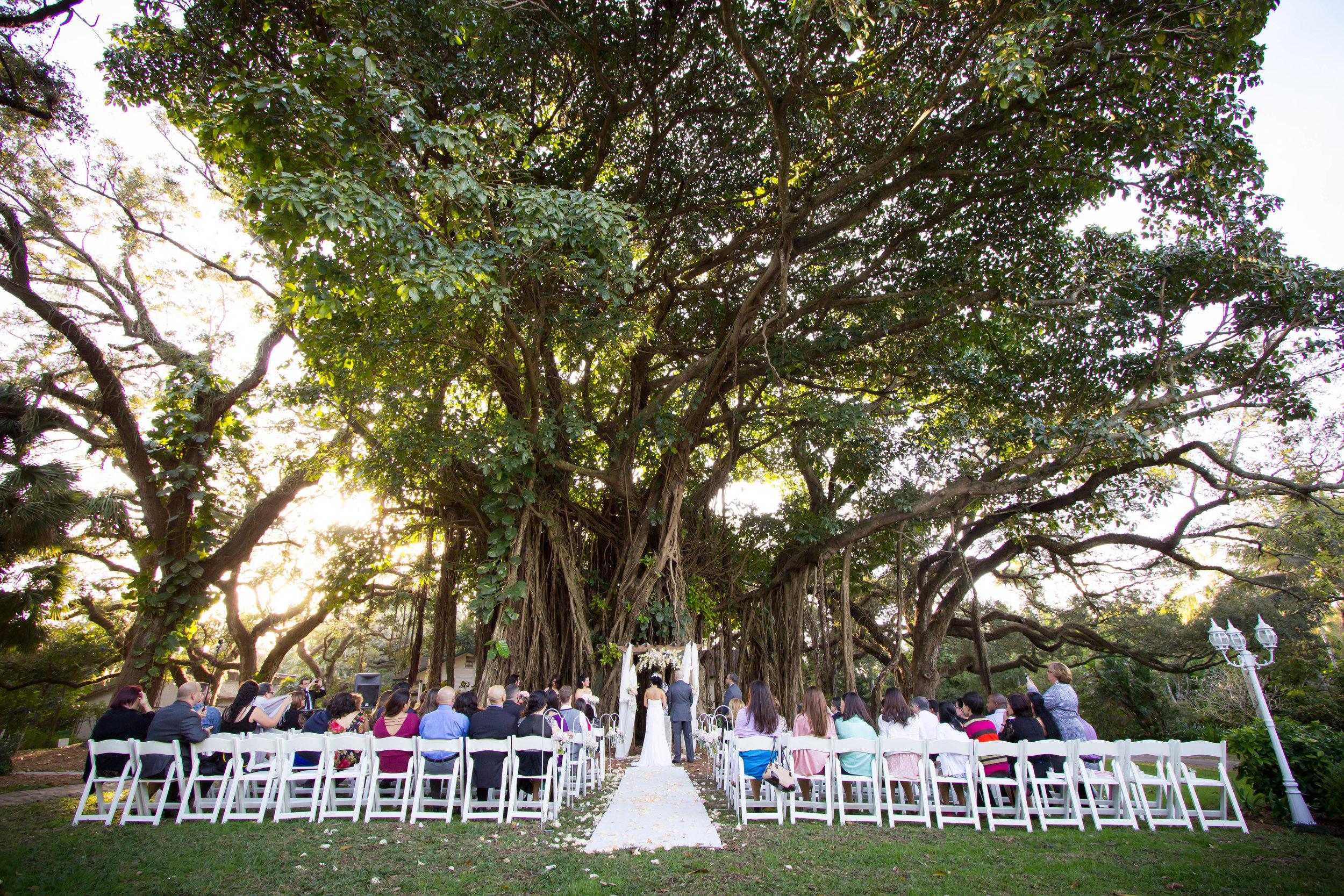 flamingo-gardens-wedding-photographer.jpg