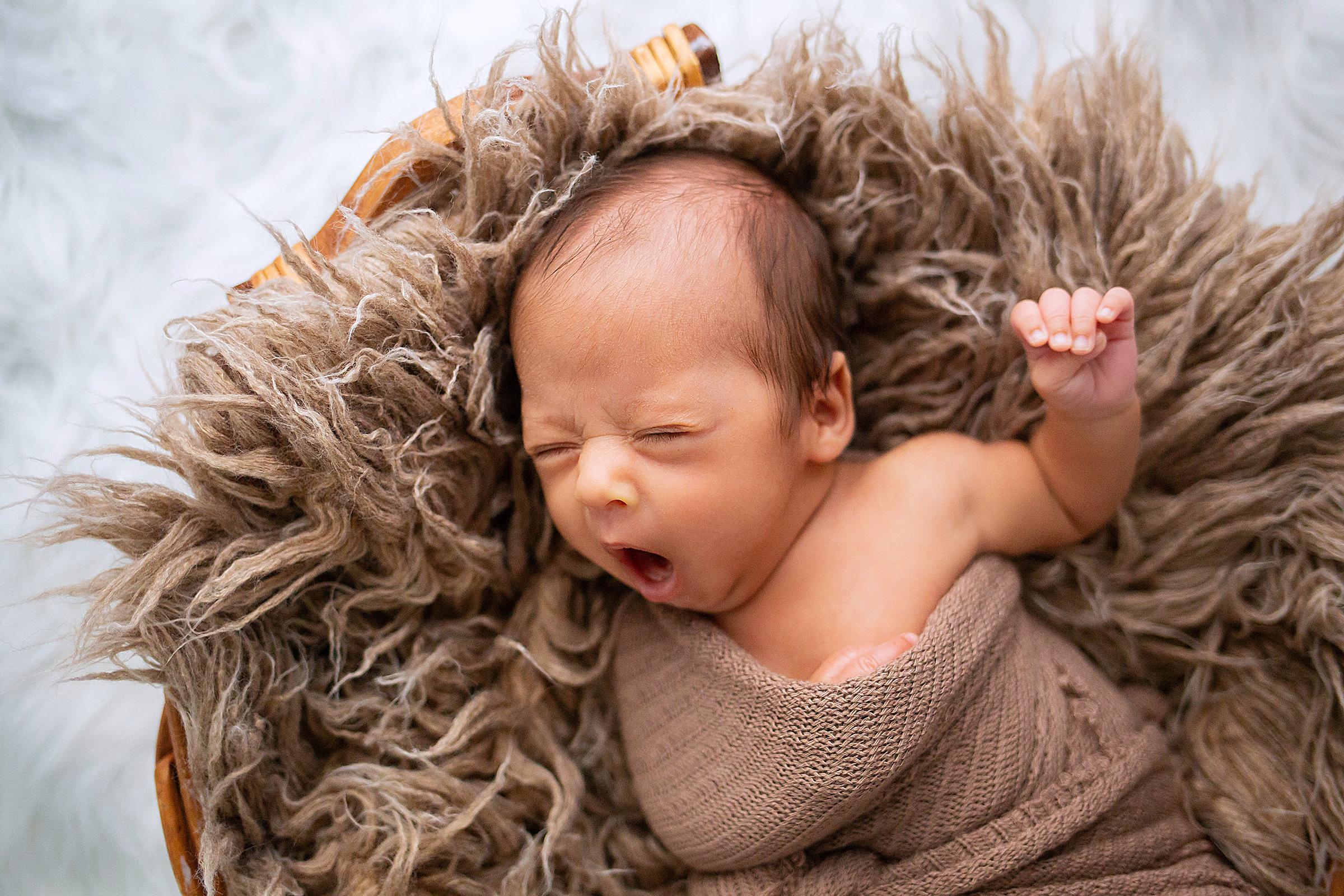 mount-dora-newborn-photographer.jpg