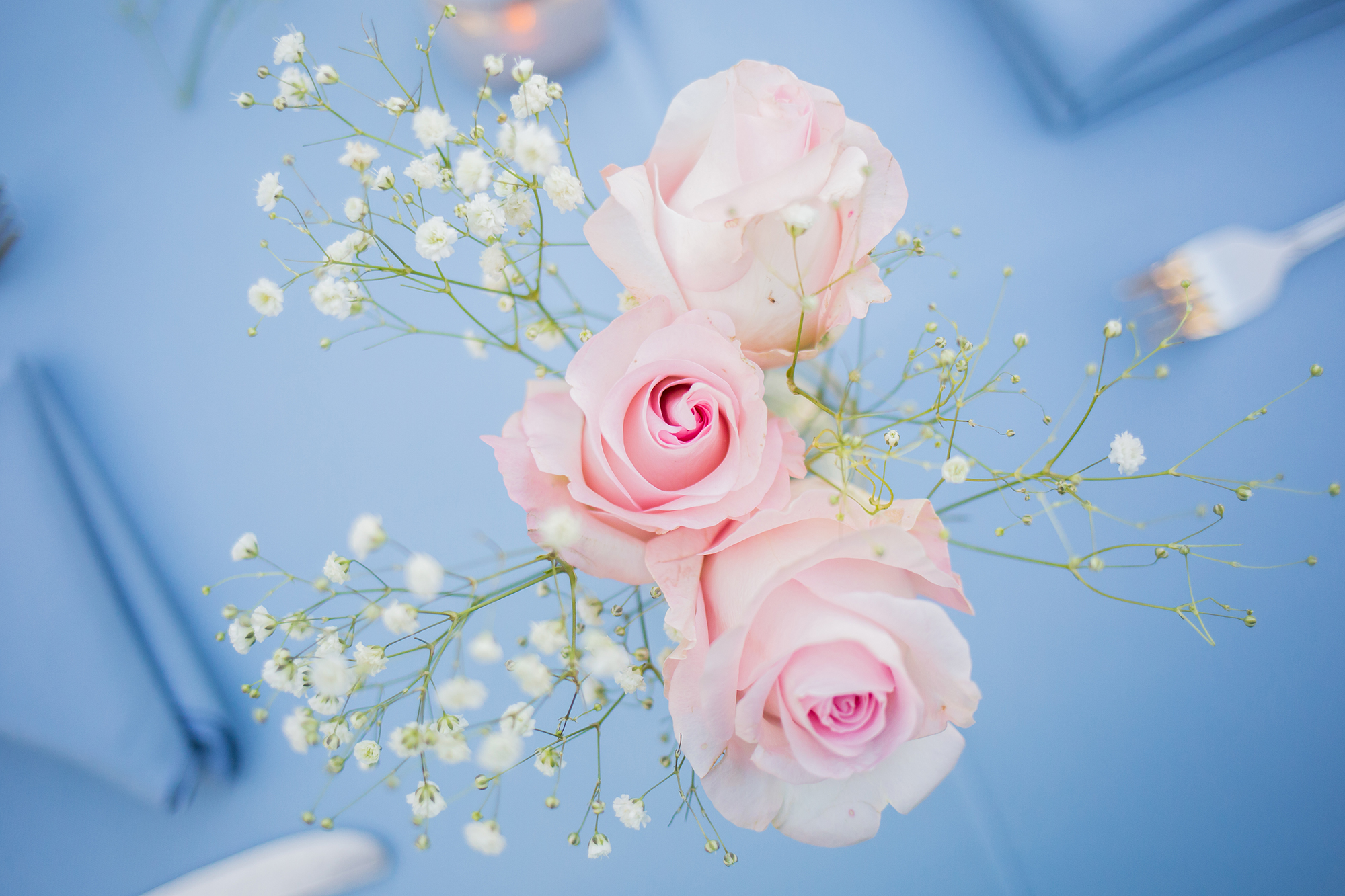 wilton-manors-wedding.jpg