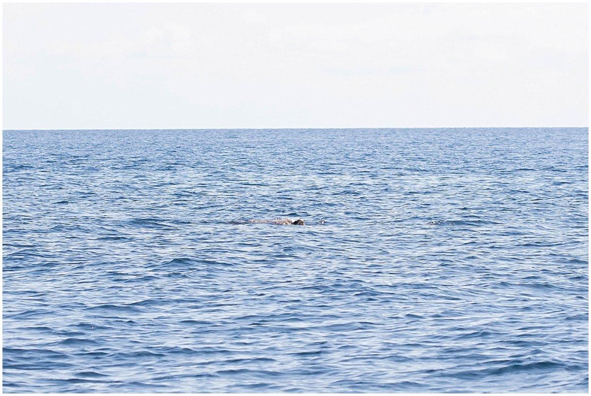 Deerfield-beach-fishing (7).jpg