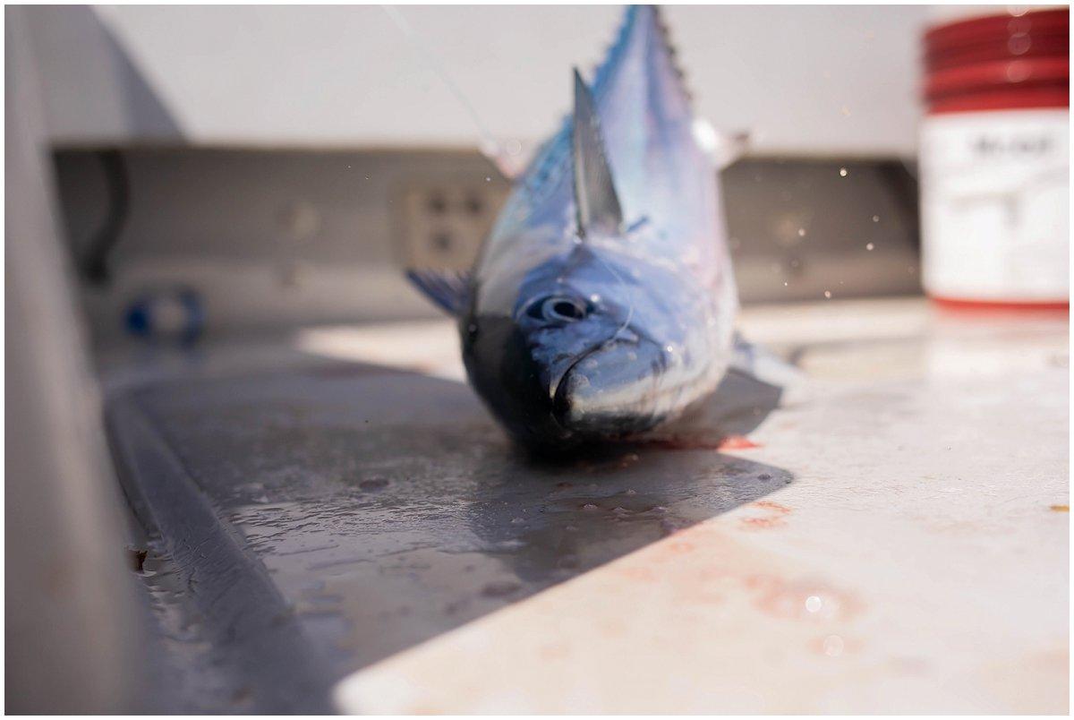 Ft. Lauderdale-Fishing (7).jpg