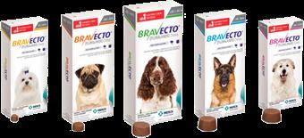 """Bravecto Chew for Dogs.""  Merck Animal Health USA , www.merck-animal-health-usa.com/bravecto/chew-for-dogs."