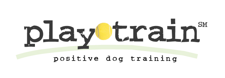PlayTrain plain logo.jpg