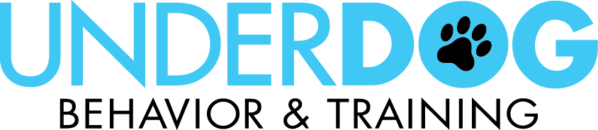 Underdog Logo Words Blue.jpg