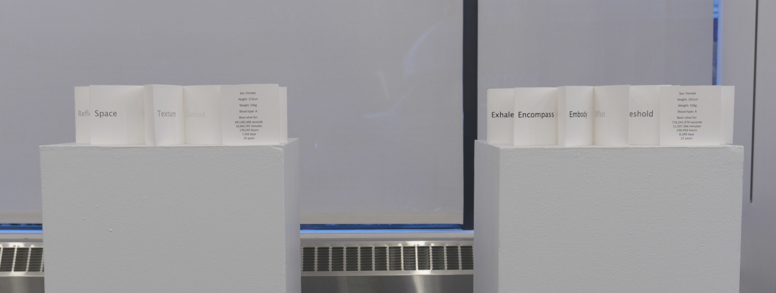 Installation of  Proximation Annotations @ Data Viz Collaborative Exhibition