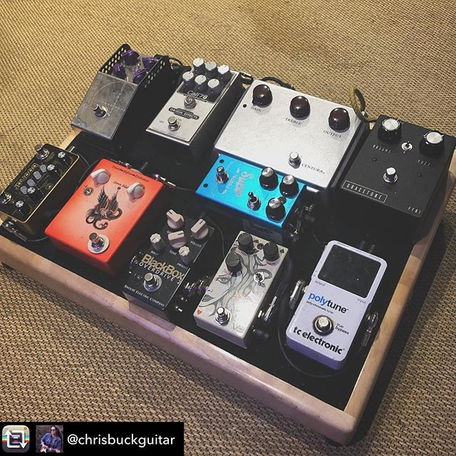 The very toneful and dead sexy pedalboard of @chrisbuckguitar. • • Repost from @chrisbuckguitar using @RepostRegramApp - ...for everyone asking after yesterday's post, the current iteration of the board. But soon to change again, @that_pedal_show 😆 Board's from @alderandashpedalboards. Signal chain: Gtr   @gracetoneeffects FF01   @ceriatone Centura @origineffects Cali76   @thorpyfx Gunshot   @tcelectronic Polytune   @vsaudioeffects Straight Flush   @snouseelectricco BlackBox 2   @suprousa Tremolo   @hellosailoreffects Rangemaster   @dawnerprince Boonar • • • • • #Pedalboard #GearyBusey #ChrisBuck #Gear #Guitarist #KnowYourTone #ToneMob #FridayFretworks #gracetoneeffects #pedalboardoftheday #fuzz