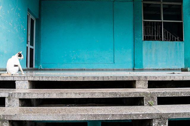 "Instagram ""Detrás de todos estos años"" . . . . . #luisbrens#luisbrens.com#centrohabana#cuba#havana #cubaylafotografia#habanacuba #mismomentosencuba #streetphotography #brensgraphy #Luis.brens"
