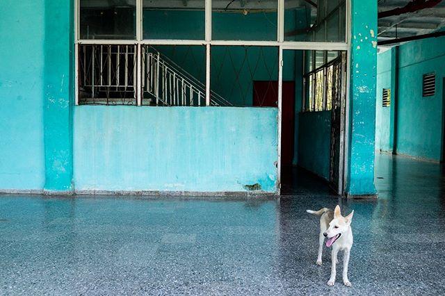 """Para matar jugadas"" Parte II . . . . #luisbrens#luisbrens.com#centrohabana#cuba#havana #cubaylafotografia#habanacuba #mismomentosencuba #streetphotography #brensgraphy #Luis.brens"
