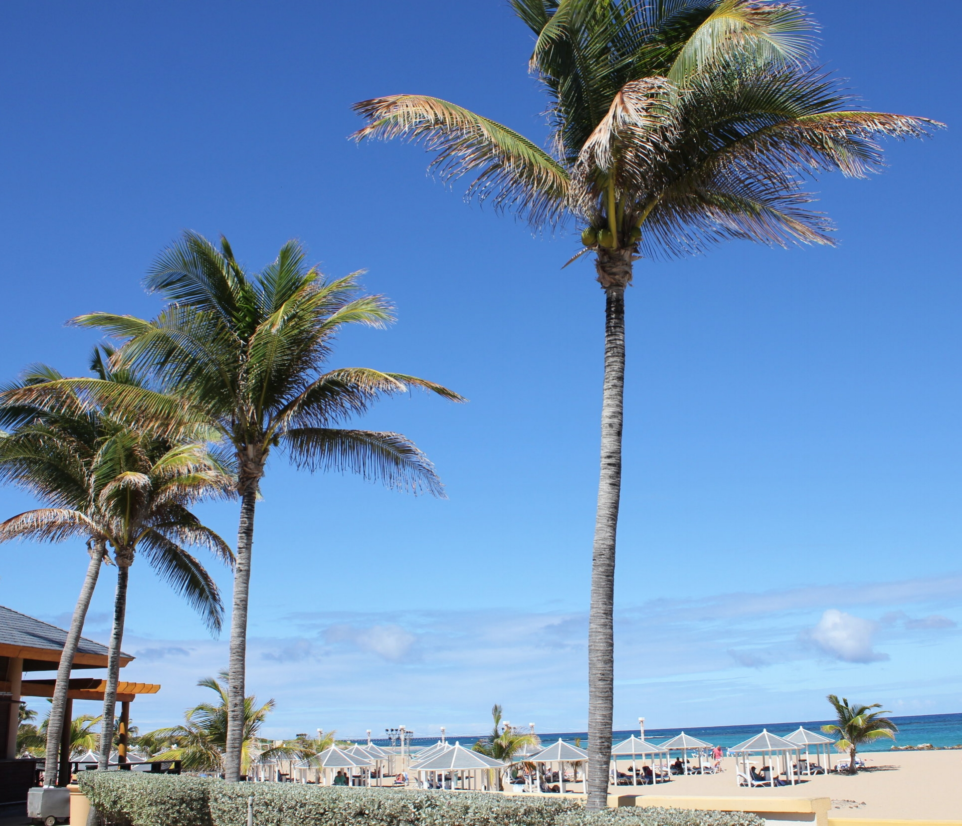 Marriott Resort St. Kitts – Approach to the beach