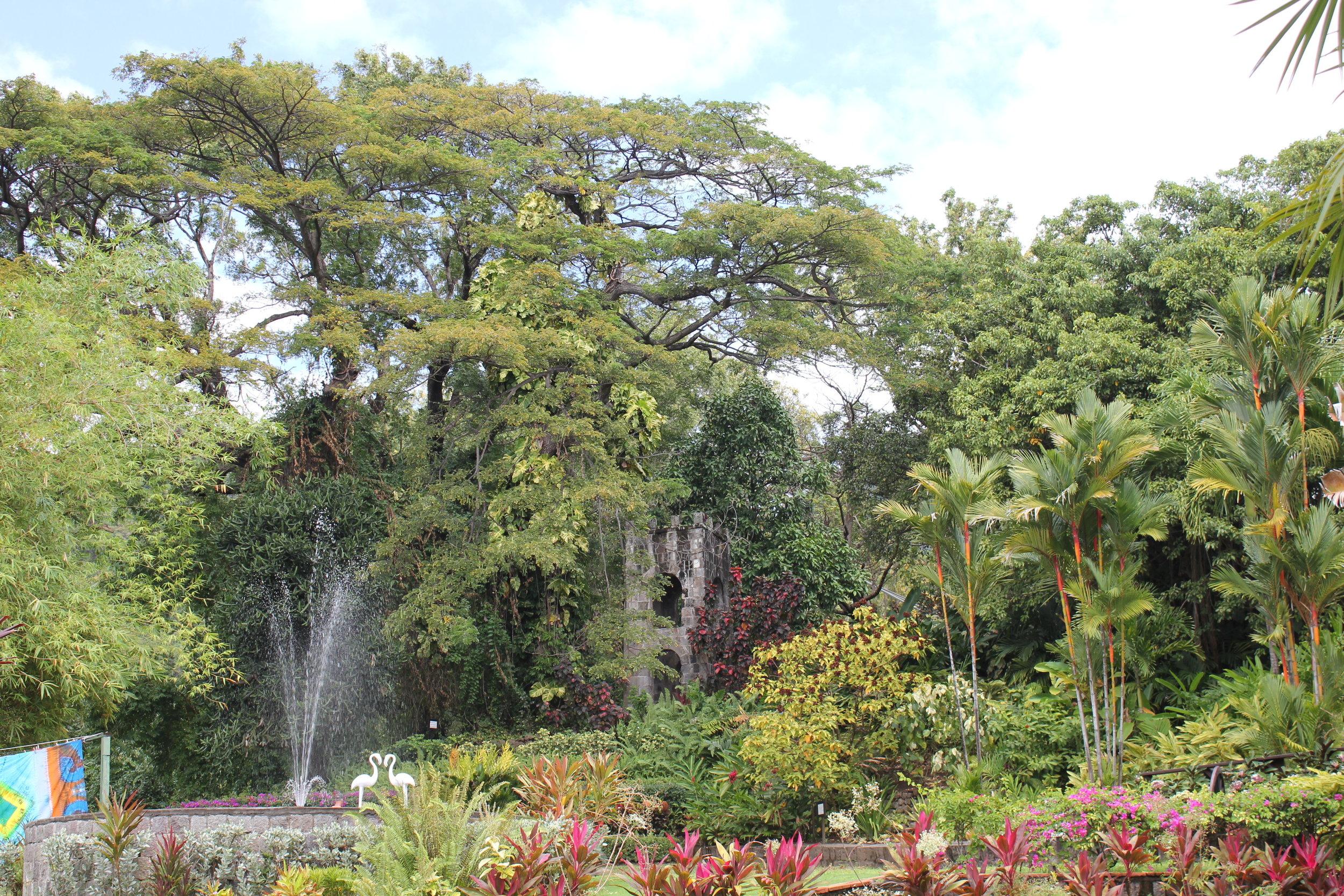 Romney Manor – Gardens