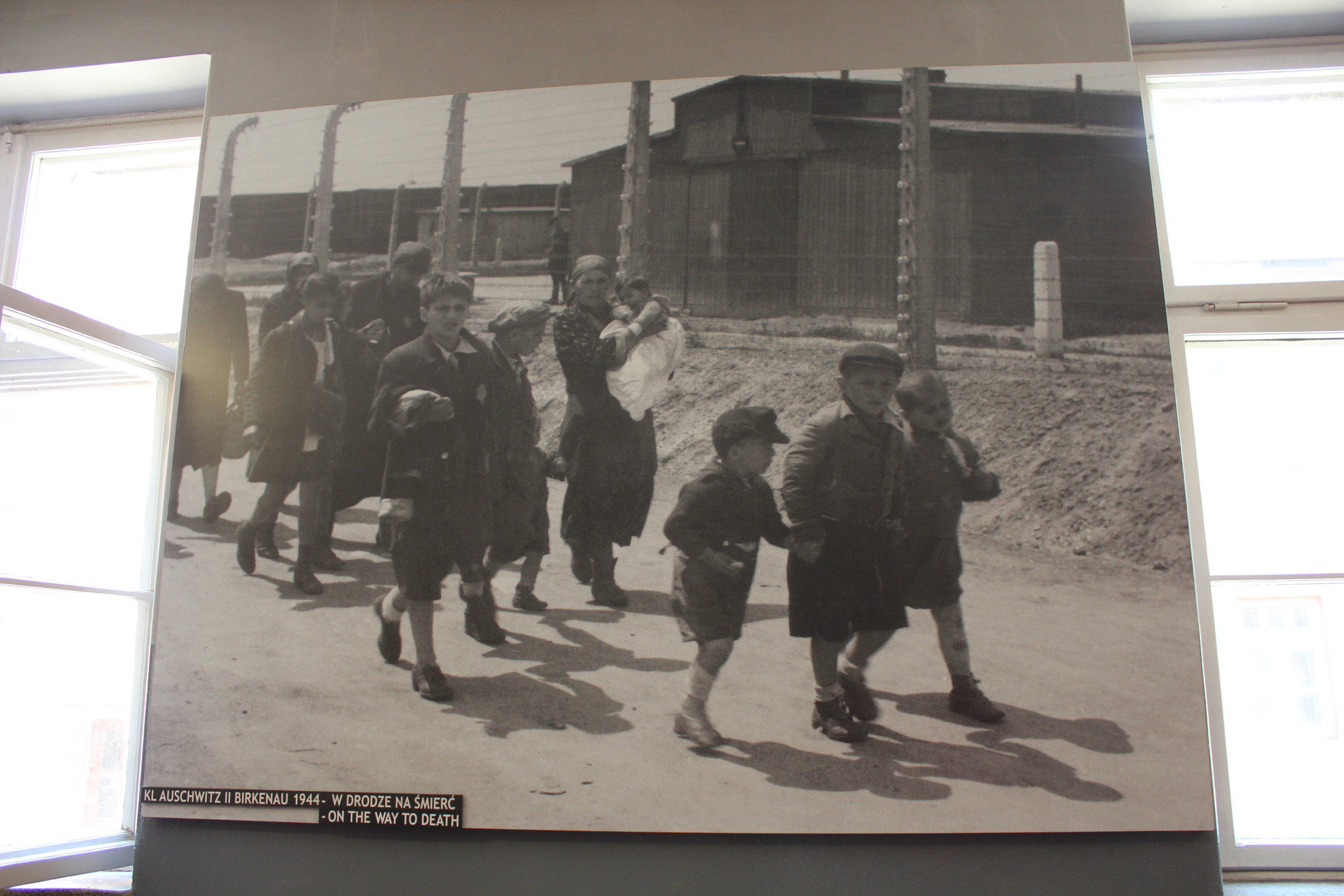 """""""On the Way to Death"""": a photograph of young Jewish boys and their families who had just arrived at Auschwitz II–Birkenau and were making the walk to the gas chambers"""
