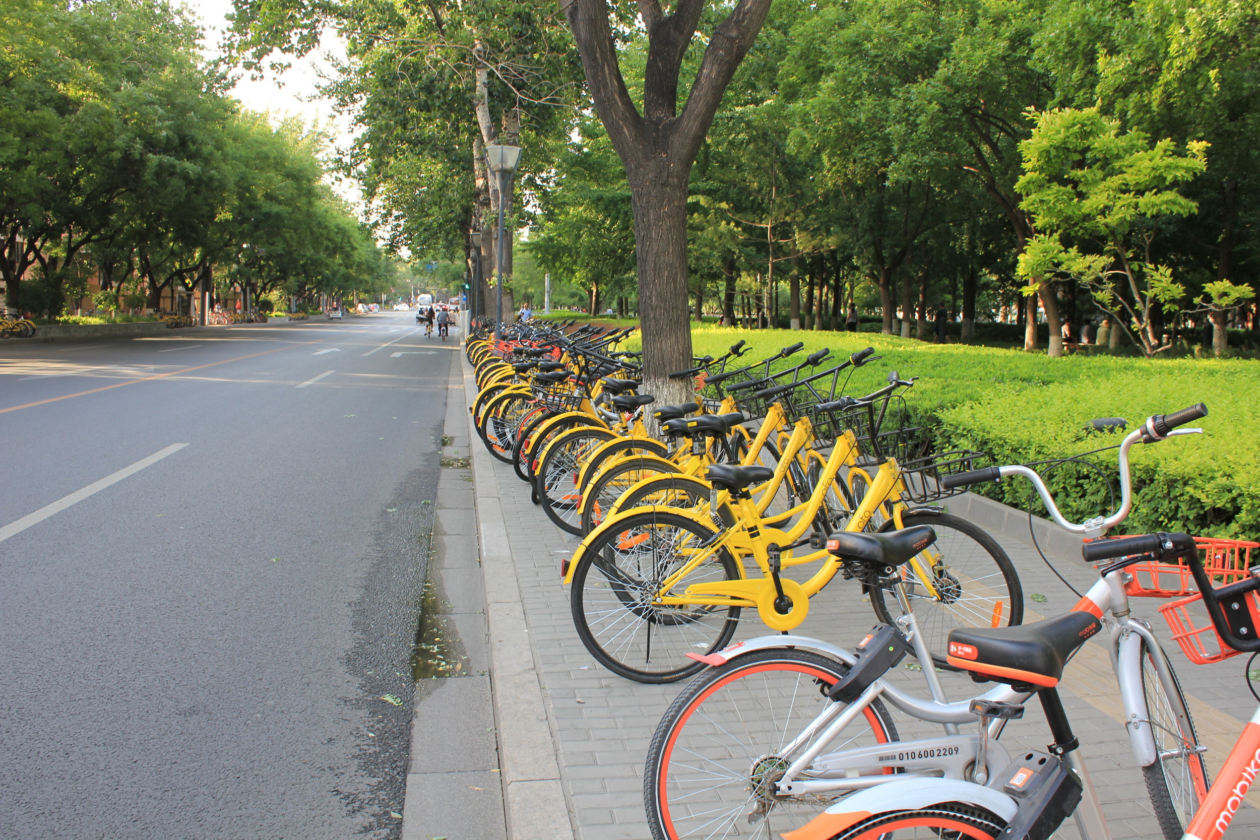 Mobile bike sharing in China