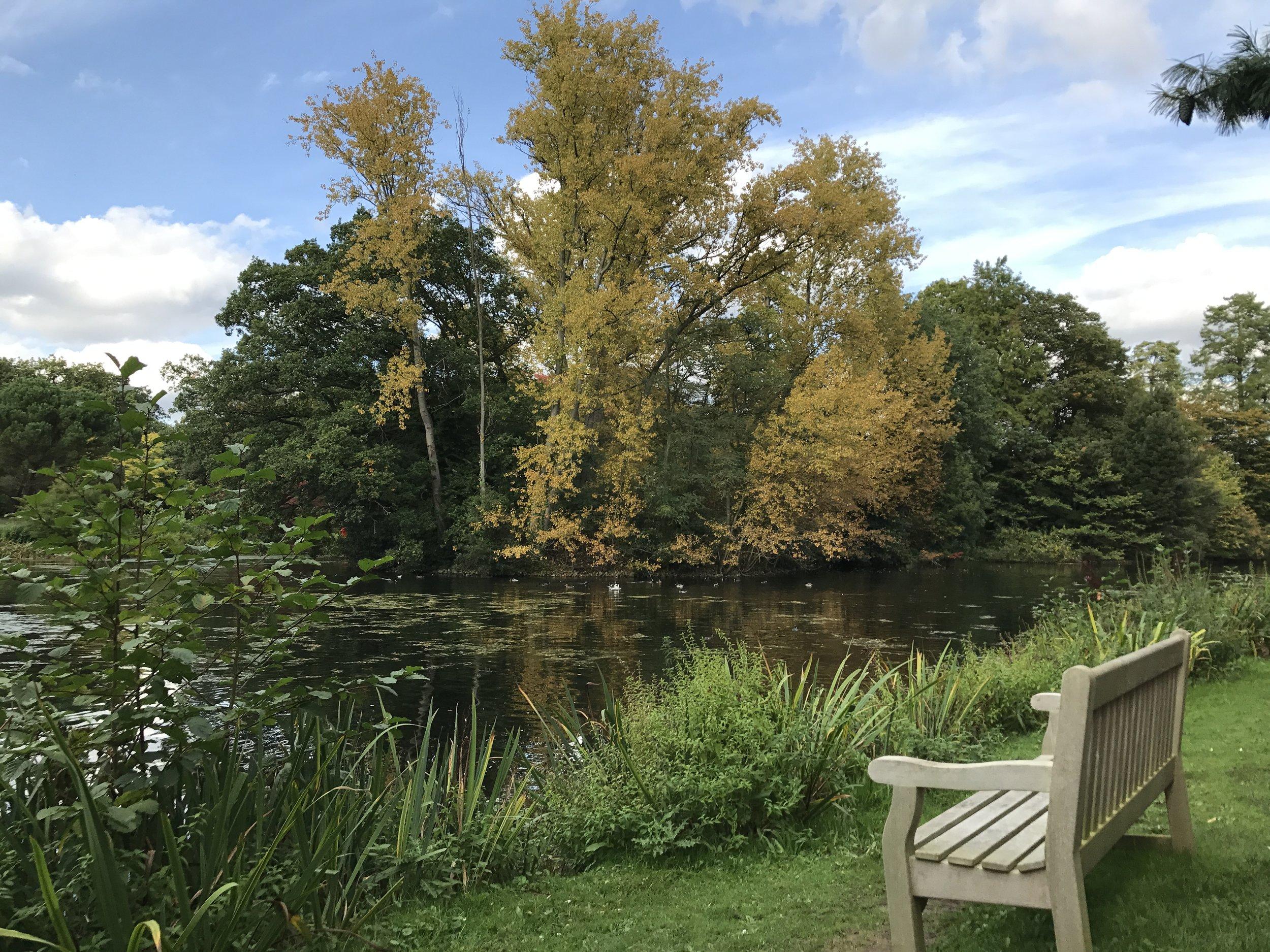 Kew Gardens – Lake