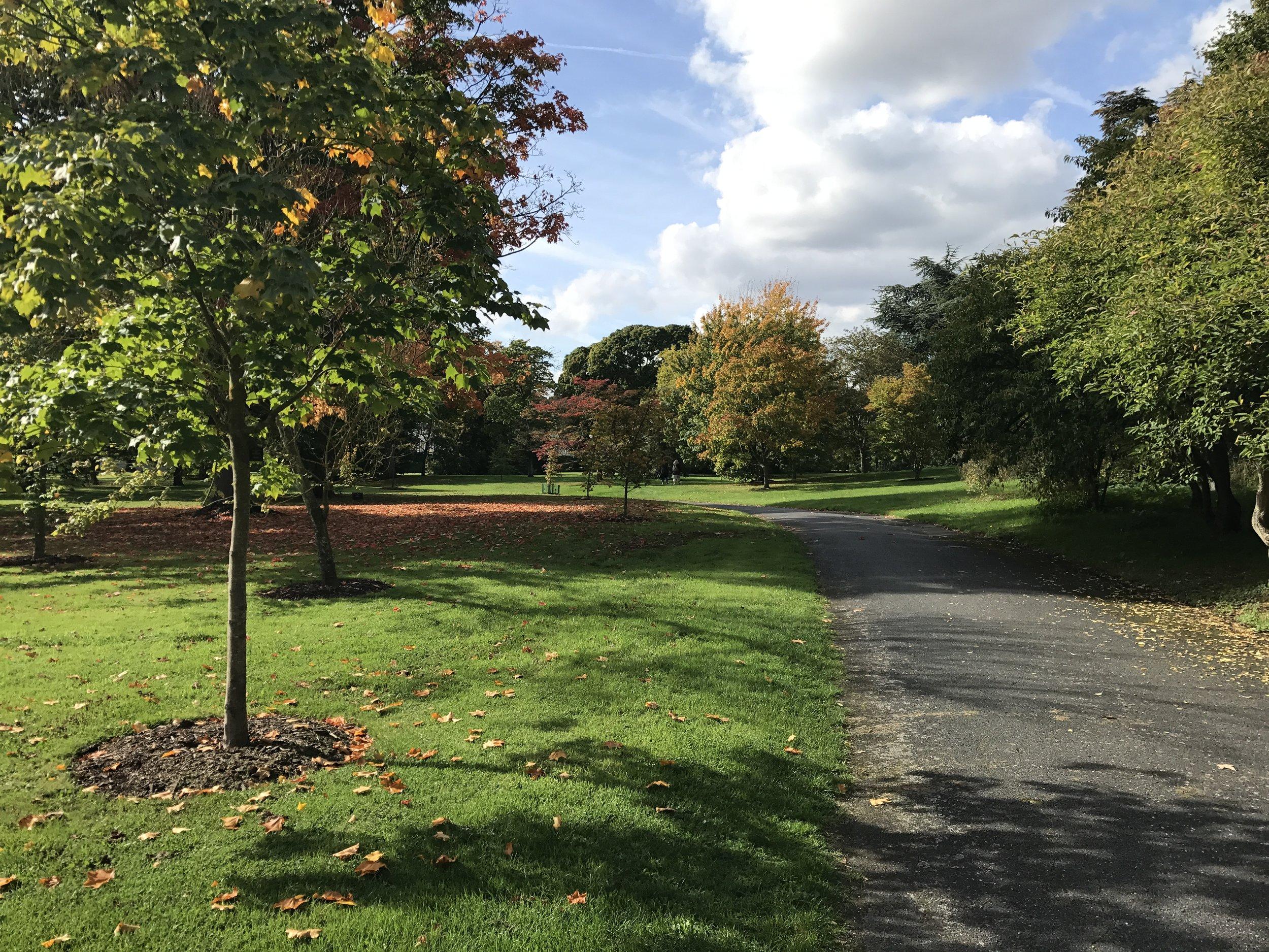 Kew Gardens – Pathway
