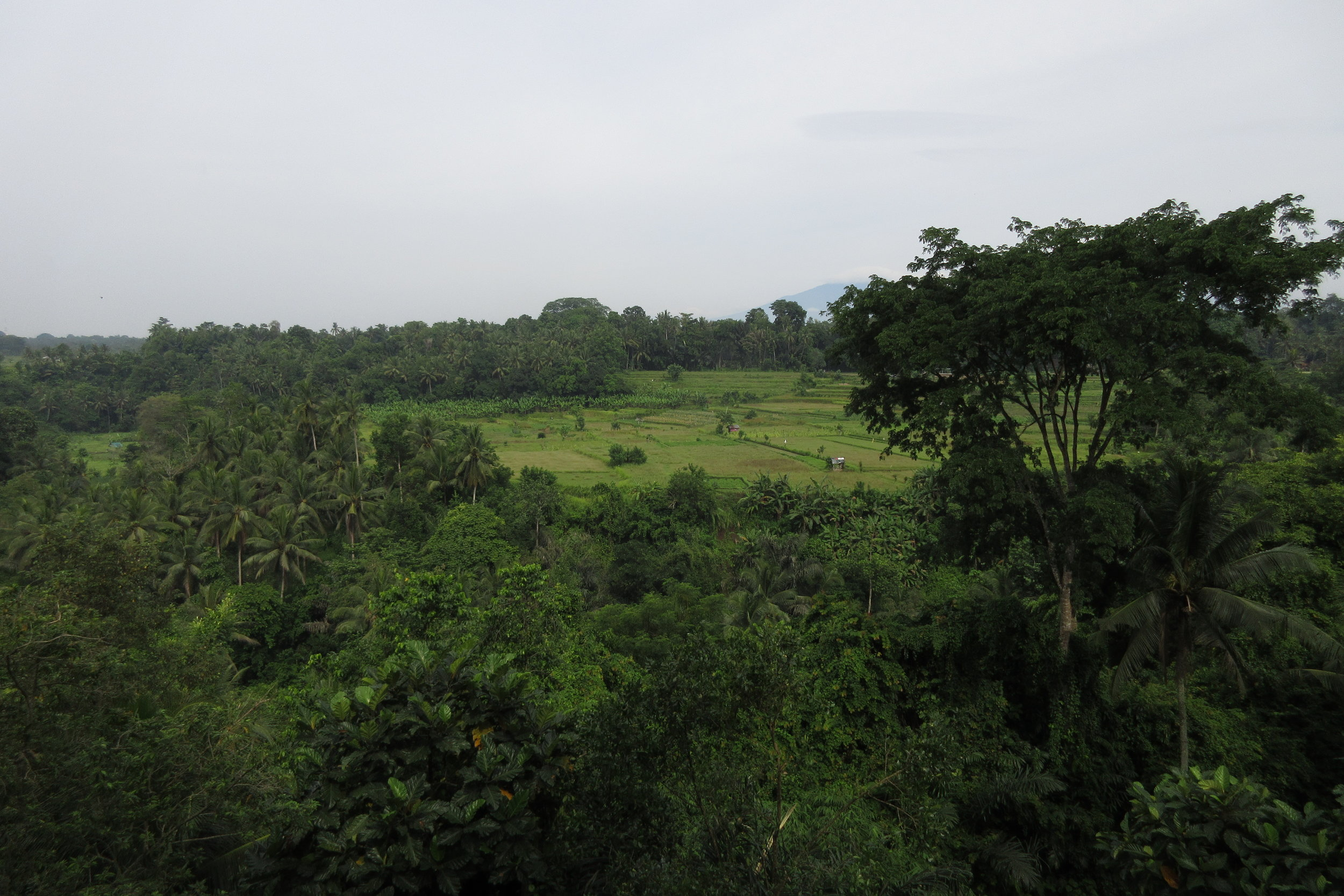 Bambu Indah Ubud – Views from the cliffside