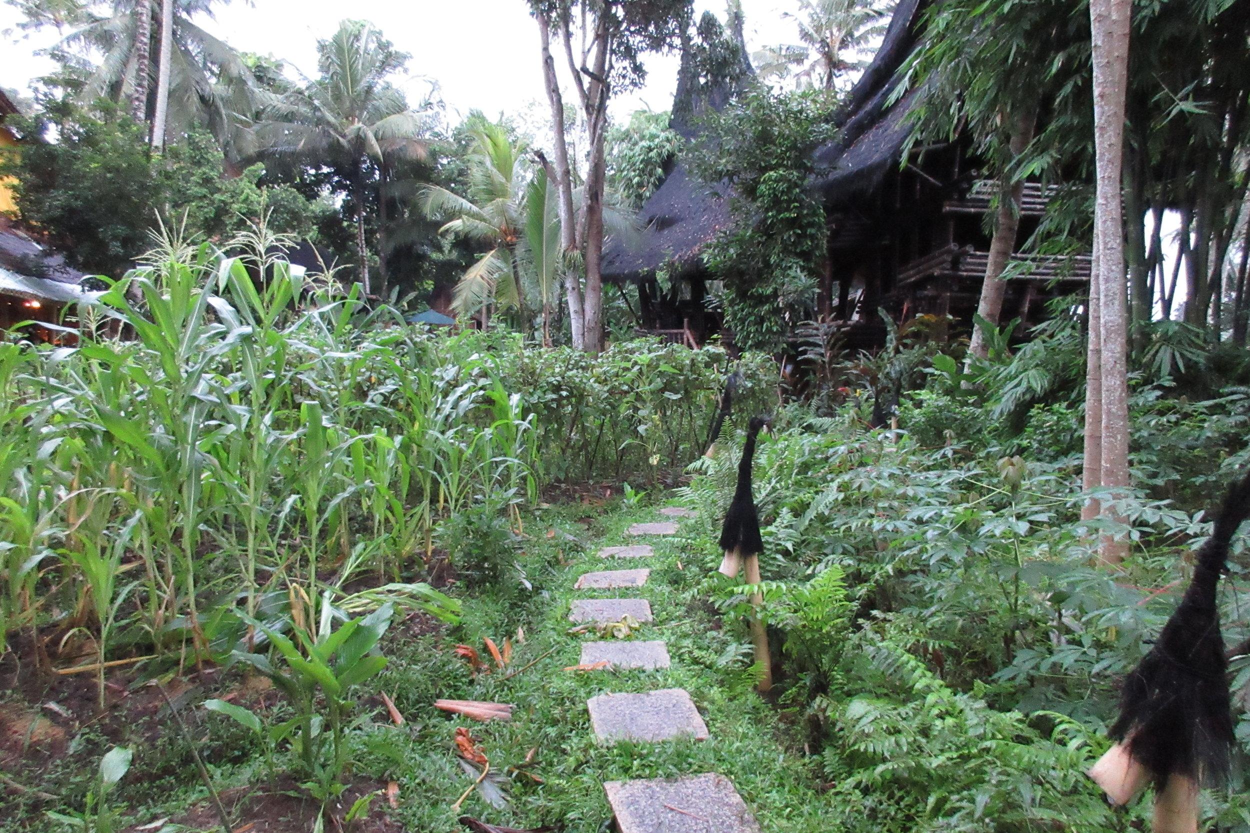 Bambu Indah Ubud – Paths