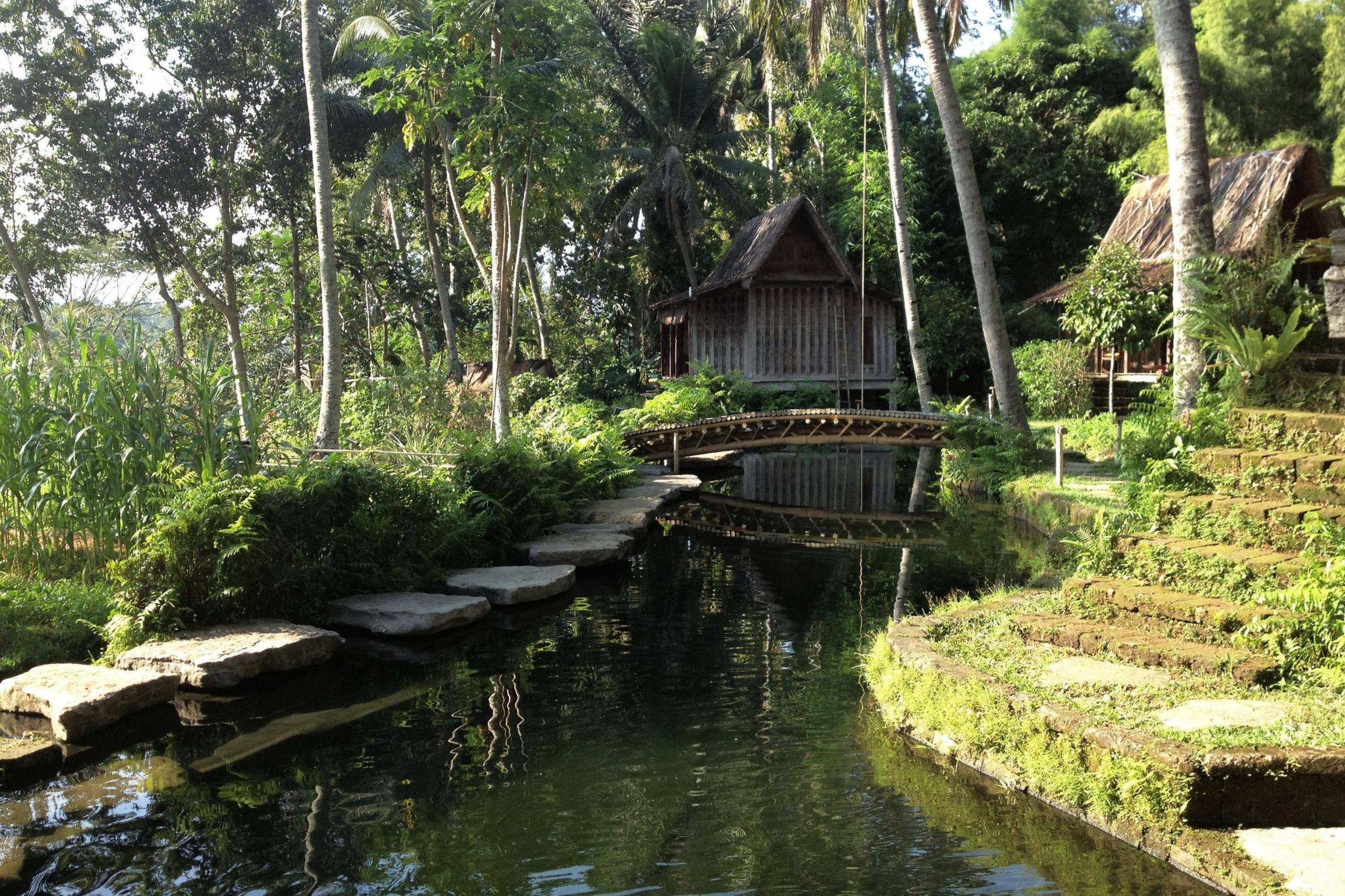 Bambu Indah Ubud – Natural pool
