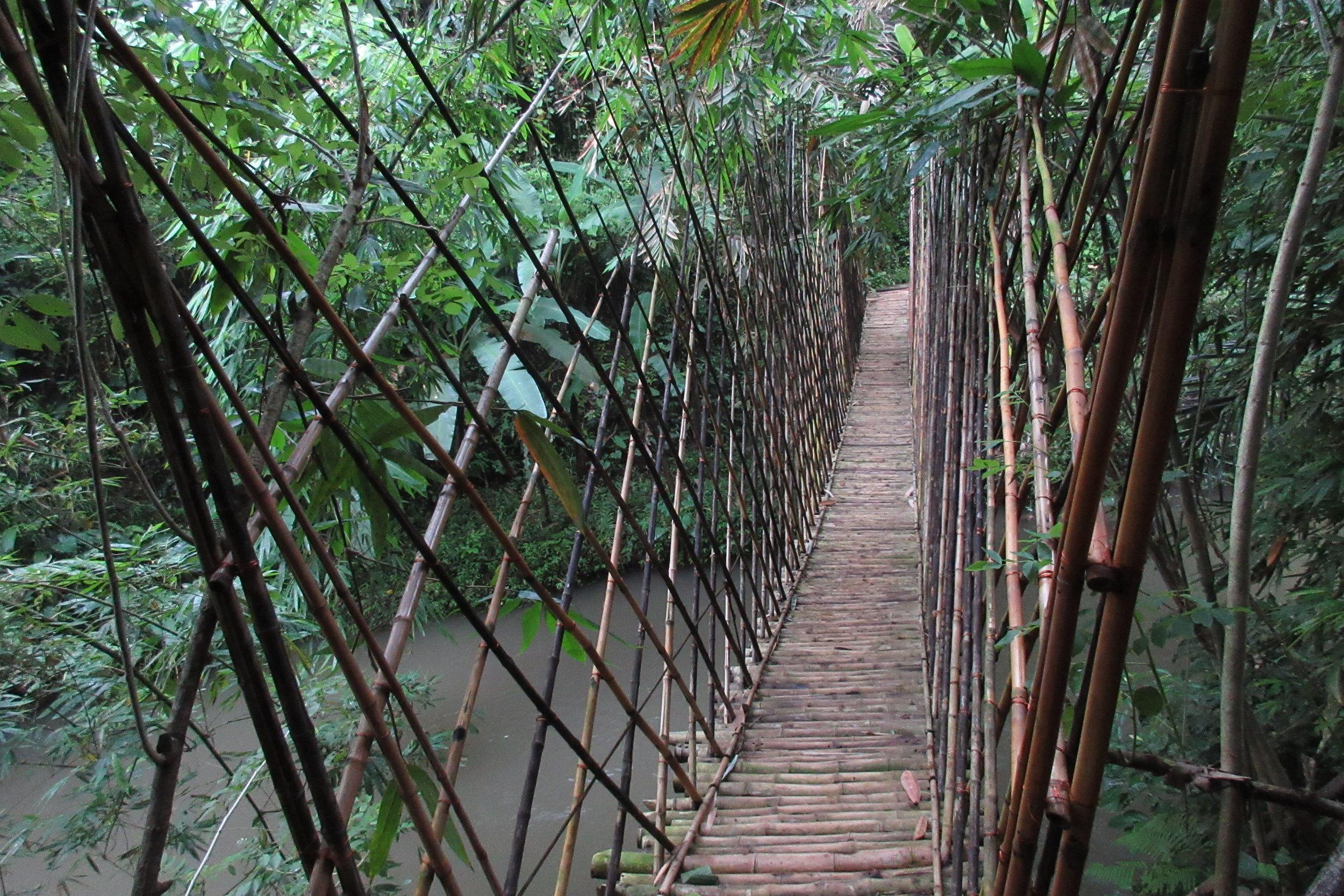 Bambu Indah Ubud – Bamboo suspension bridge