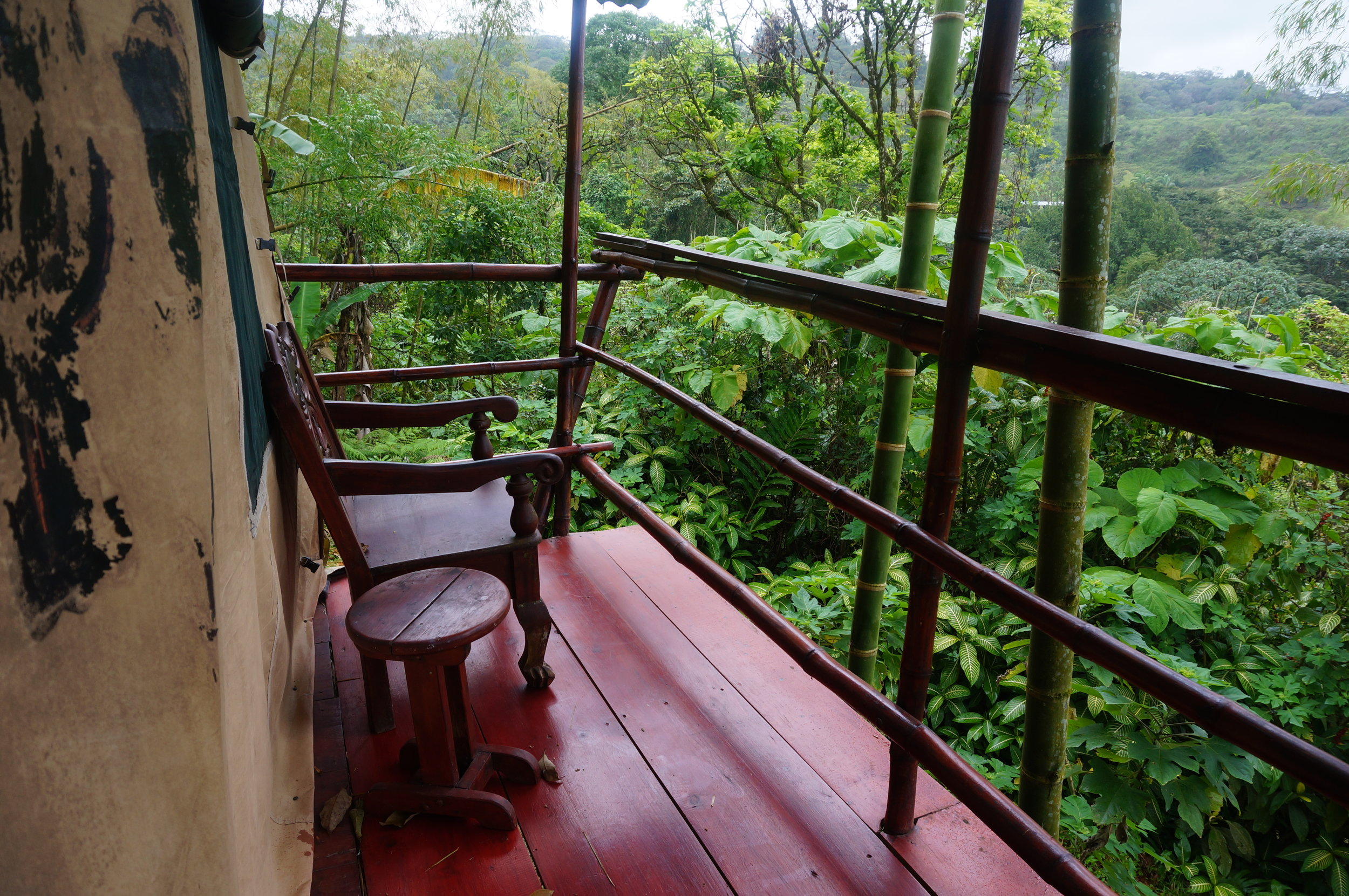 Terrace overlooking the jungle
