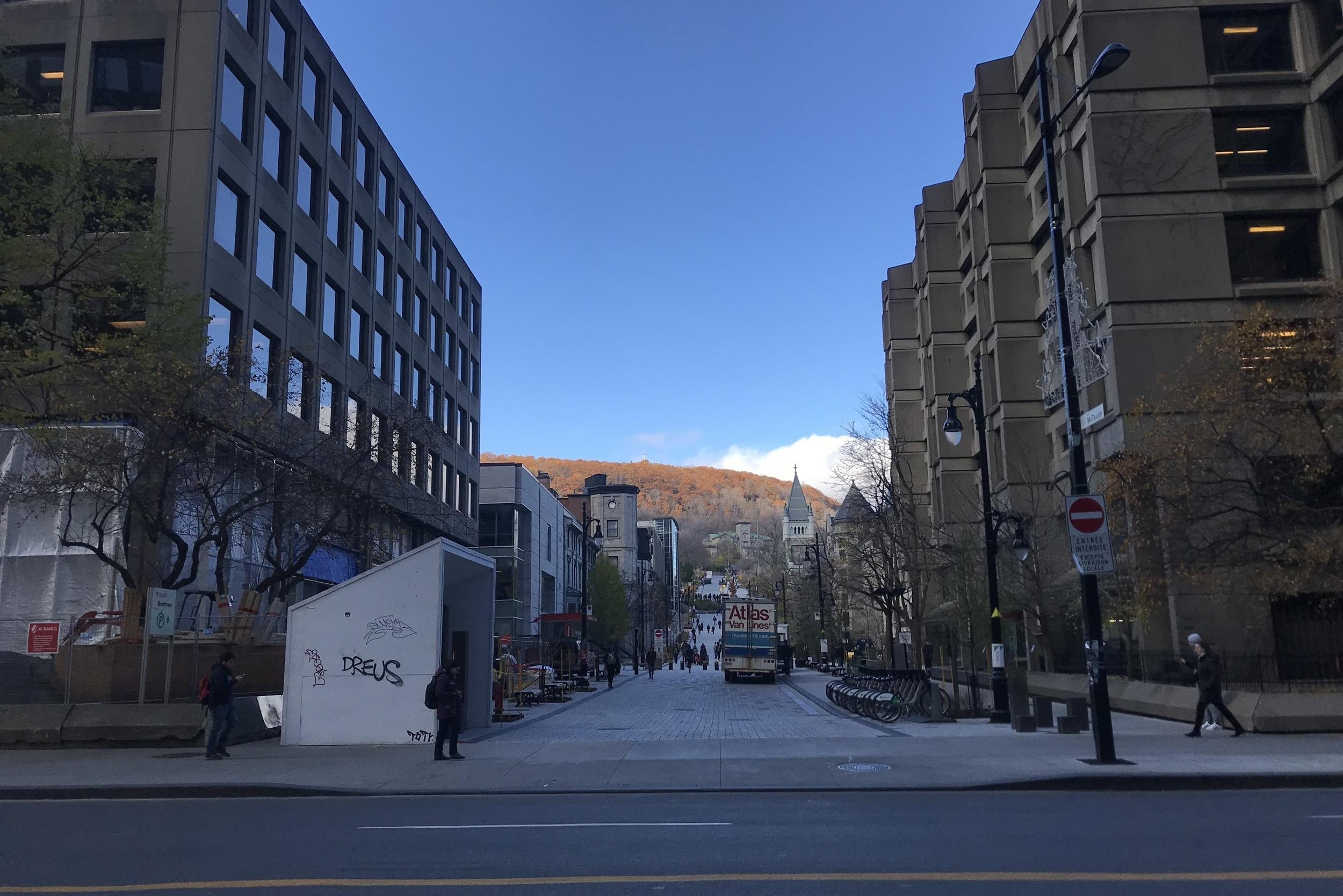 McGill University, Montreal