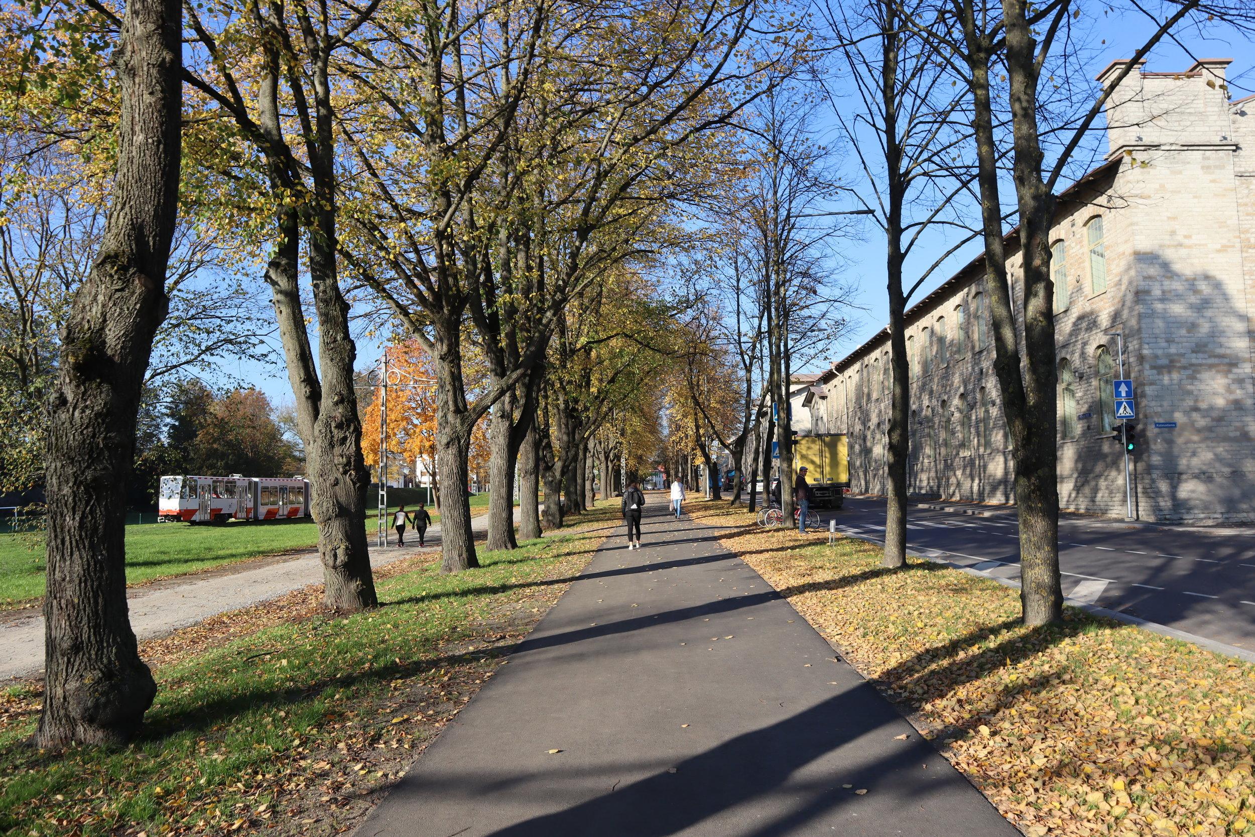 Walk from Old Town to Kalamaja District