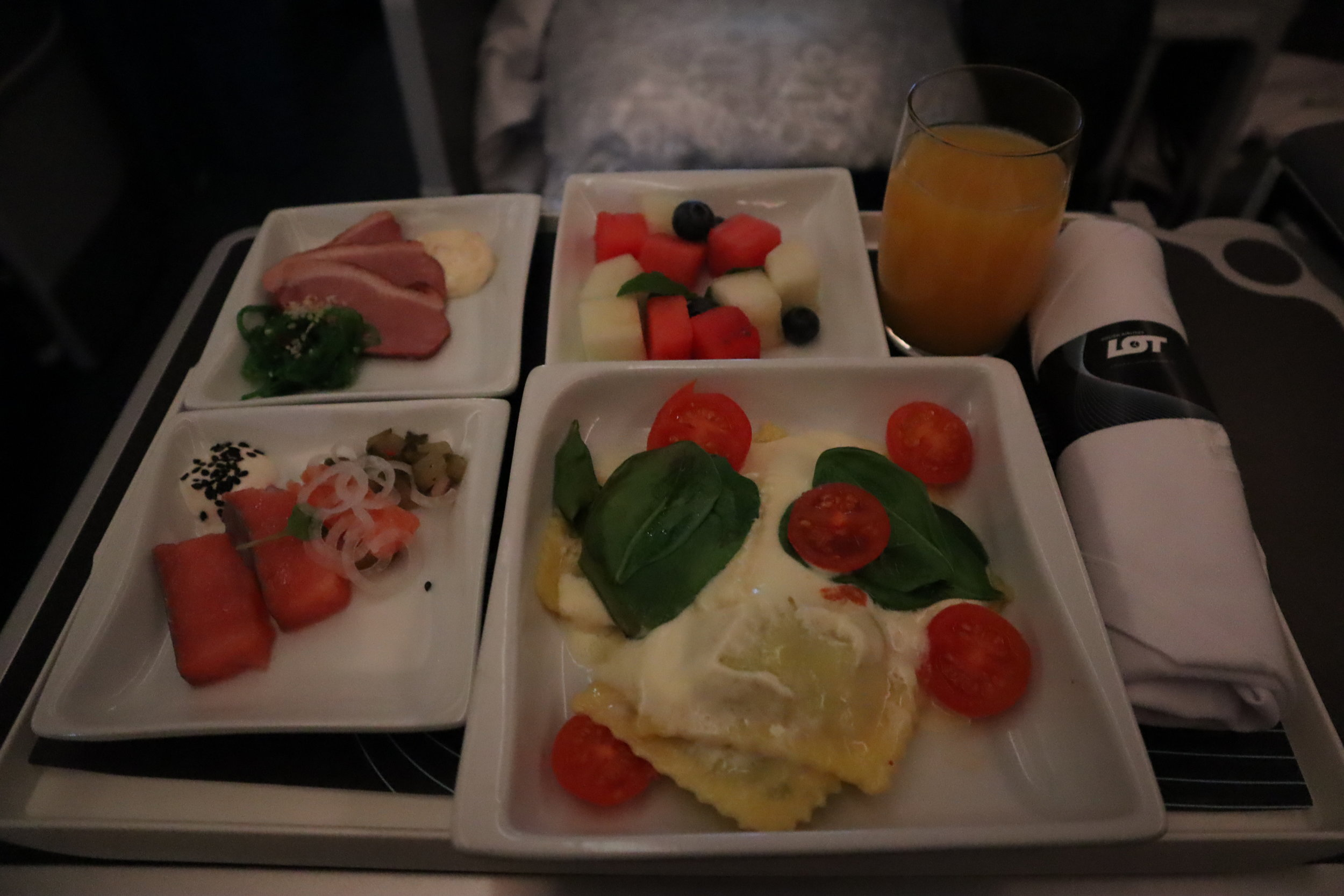 LOT Polish Airlines business class – Pre-landing meal
