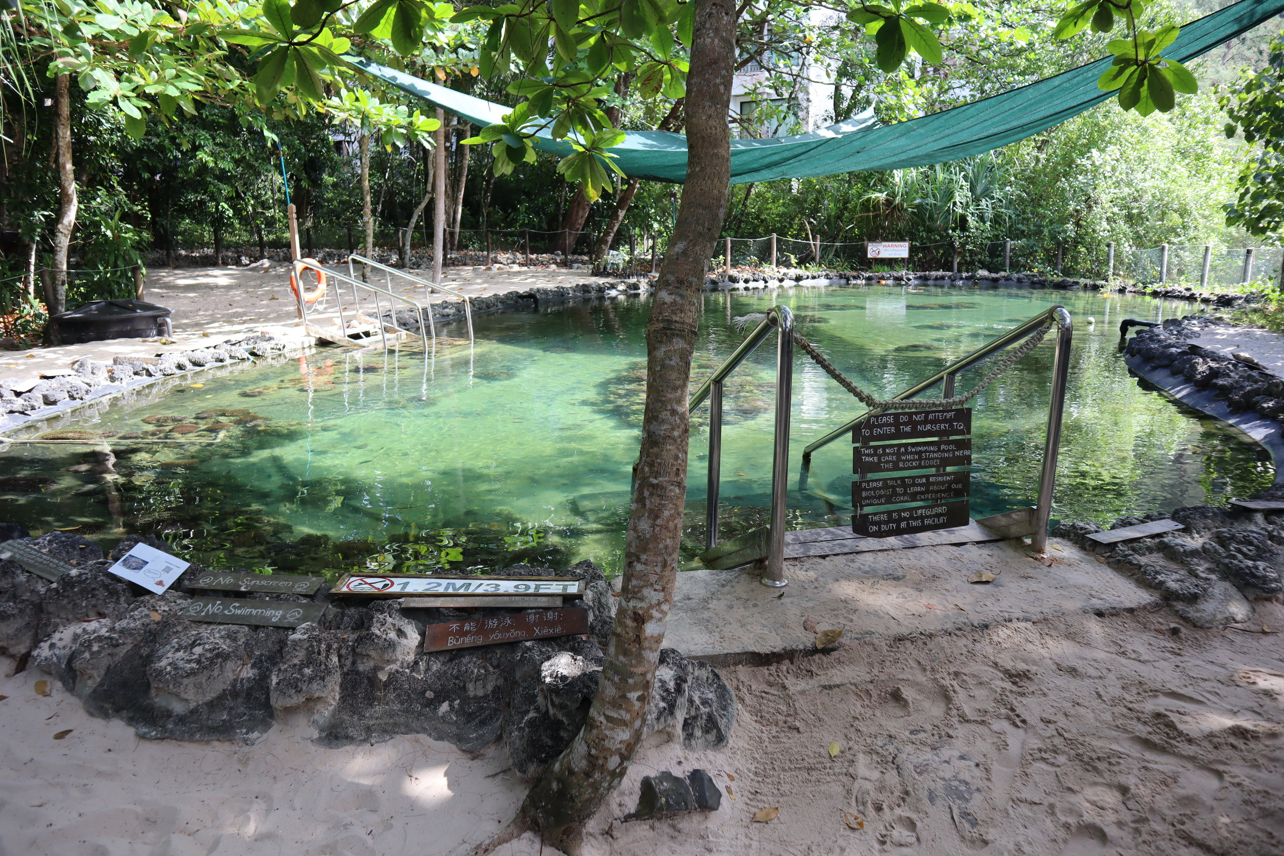 The Andaman Langkawi – Coral nursery
