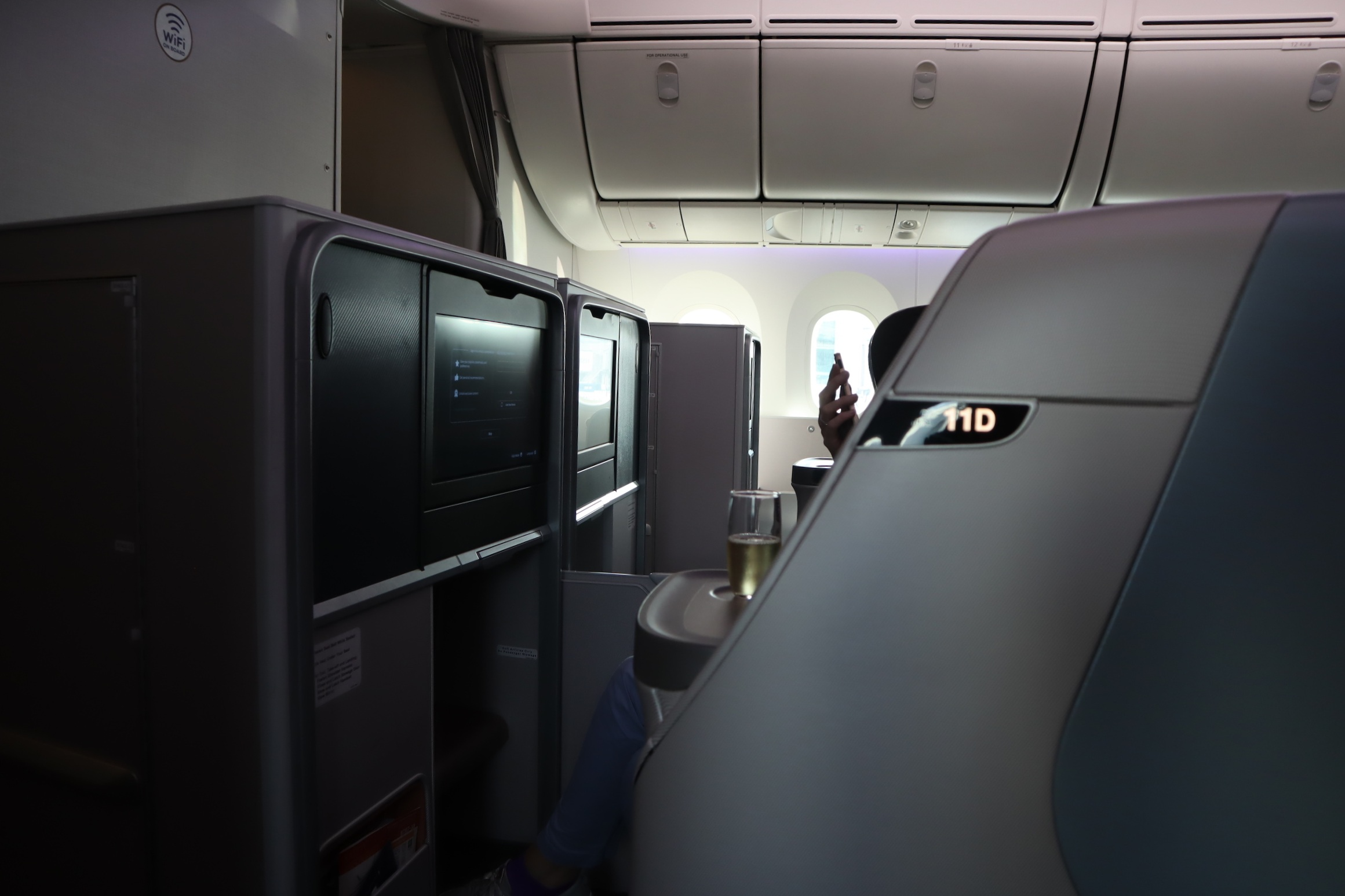 Singapore Airlines 787-10 business class – Privacy