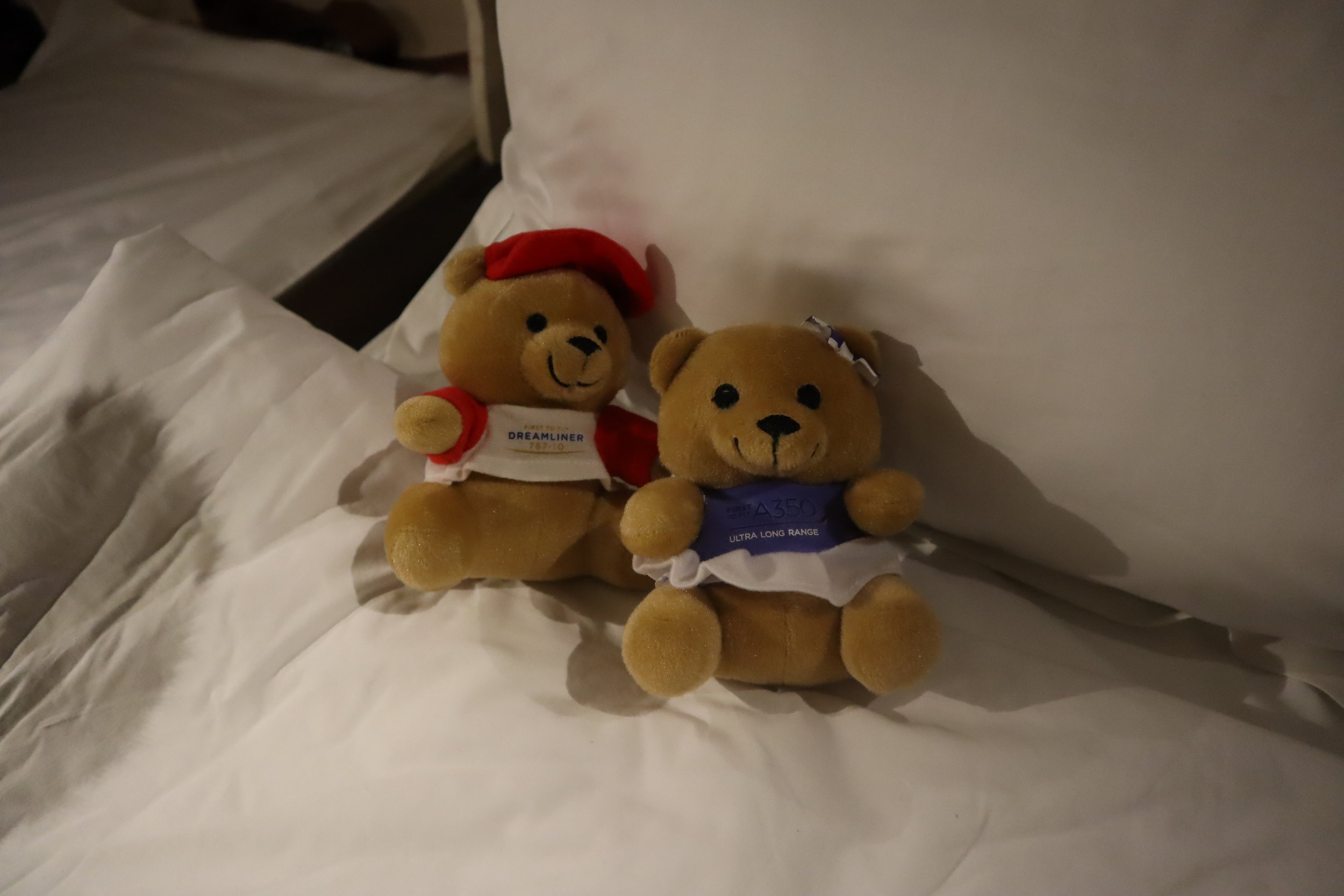 Singapore Airlines Suites Class – Teddy bears