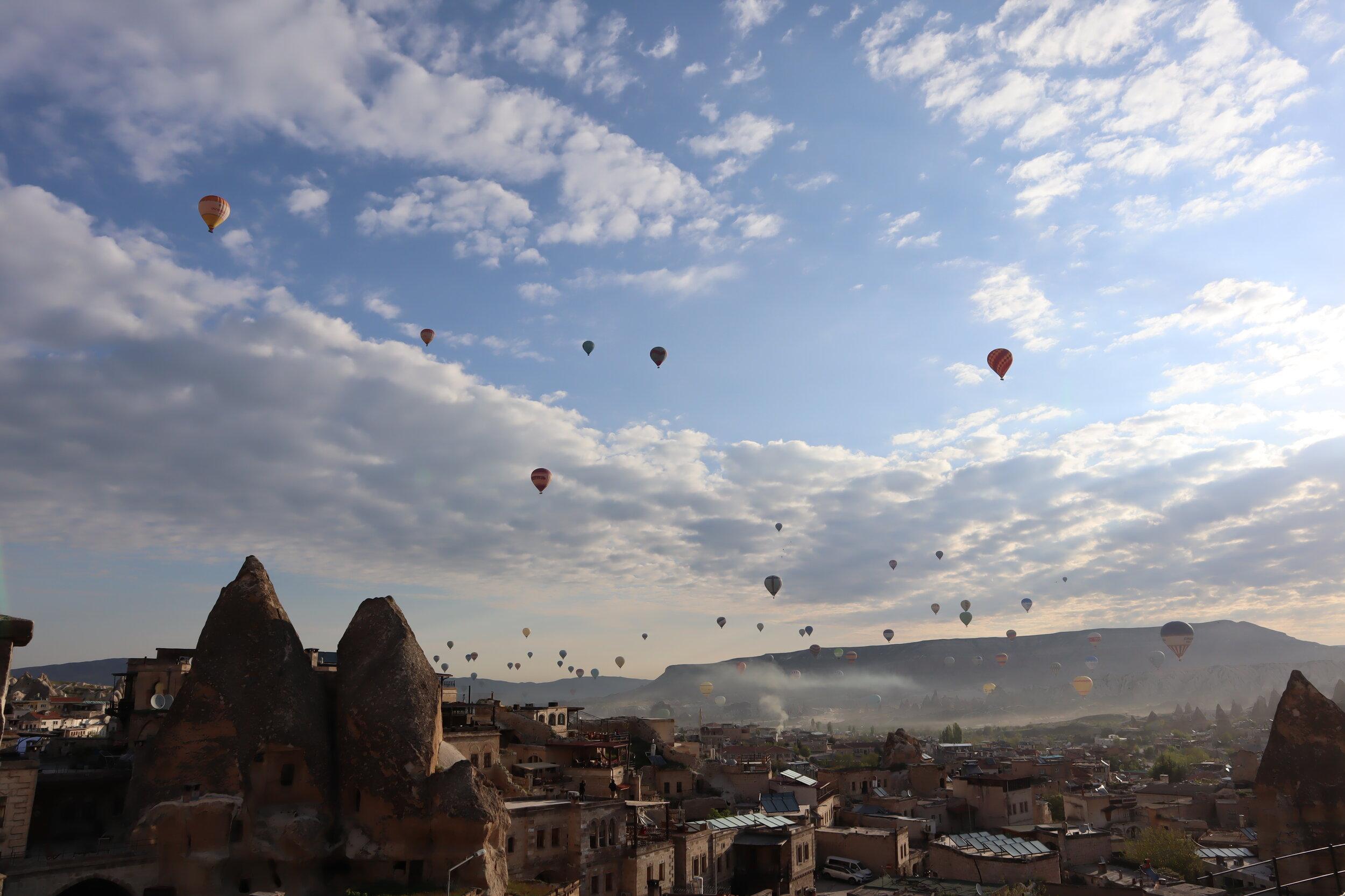 Looking at the hot air balloons