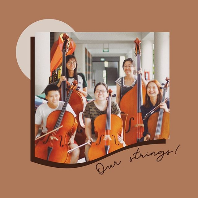 Meet our lovely...strings section?????! Yes, after years of isolation and neglect by the wind community, our string bassists are delighted to finally have the company of other fellow string players ;–) They even found a cardboard friend not far from the band room (swipe right!) Thank you to our new cellist friends for adding so much colour to our music 😌 Listen out for familiar string refrains like in Grieg's In The Hall of the Mountain King at Coda XIII on the 31st of August – DM this account or contact any friendly RWinds member for tickets!