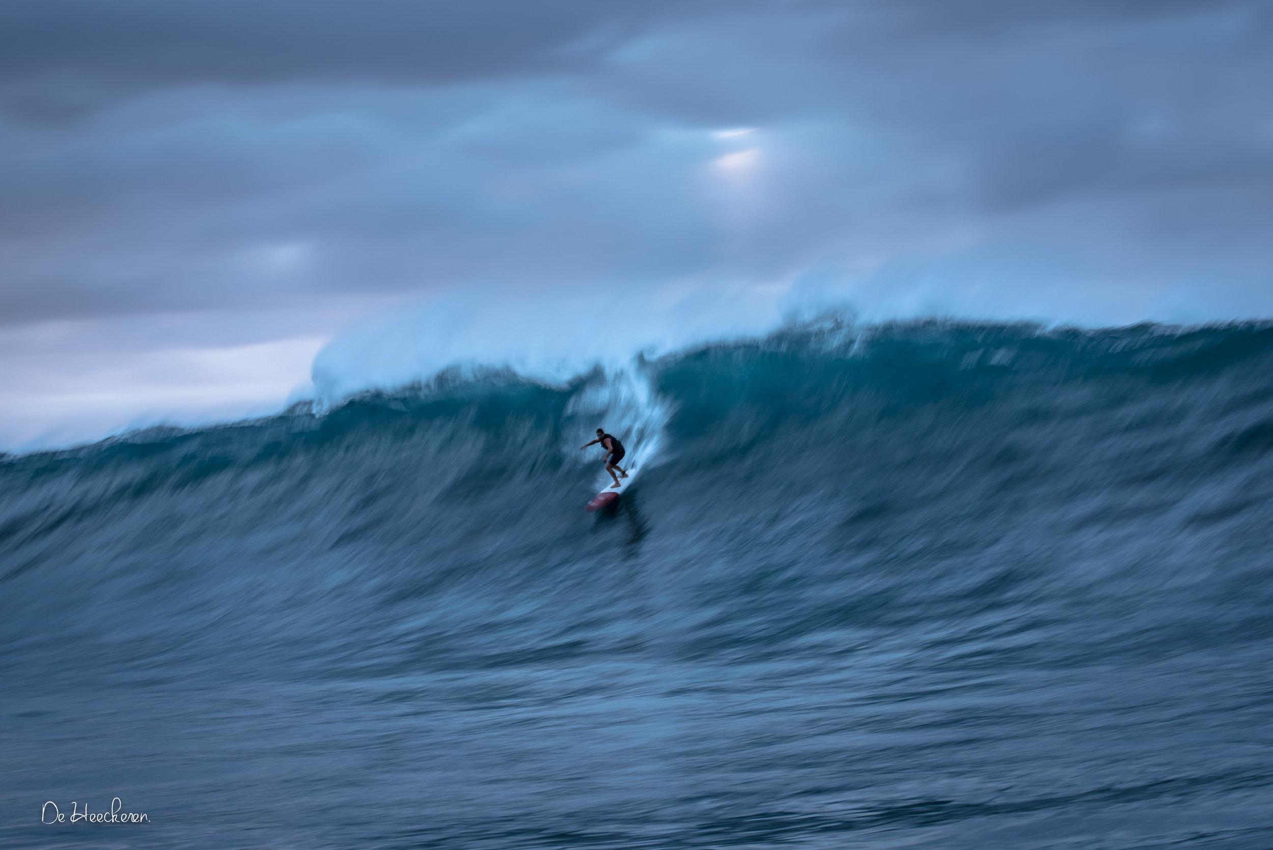 Hawaii_outer_reefs_21-1-2015-0985.jpg