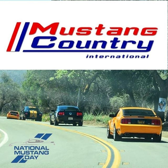 Happy National Mustang Day!