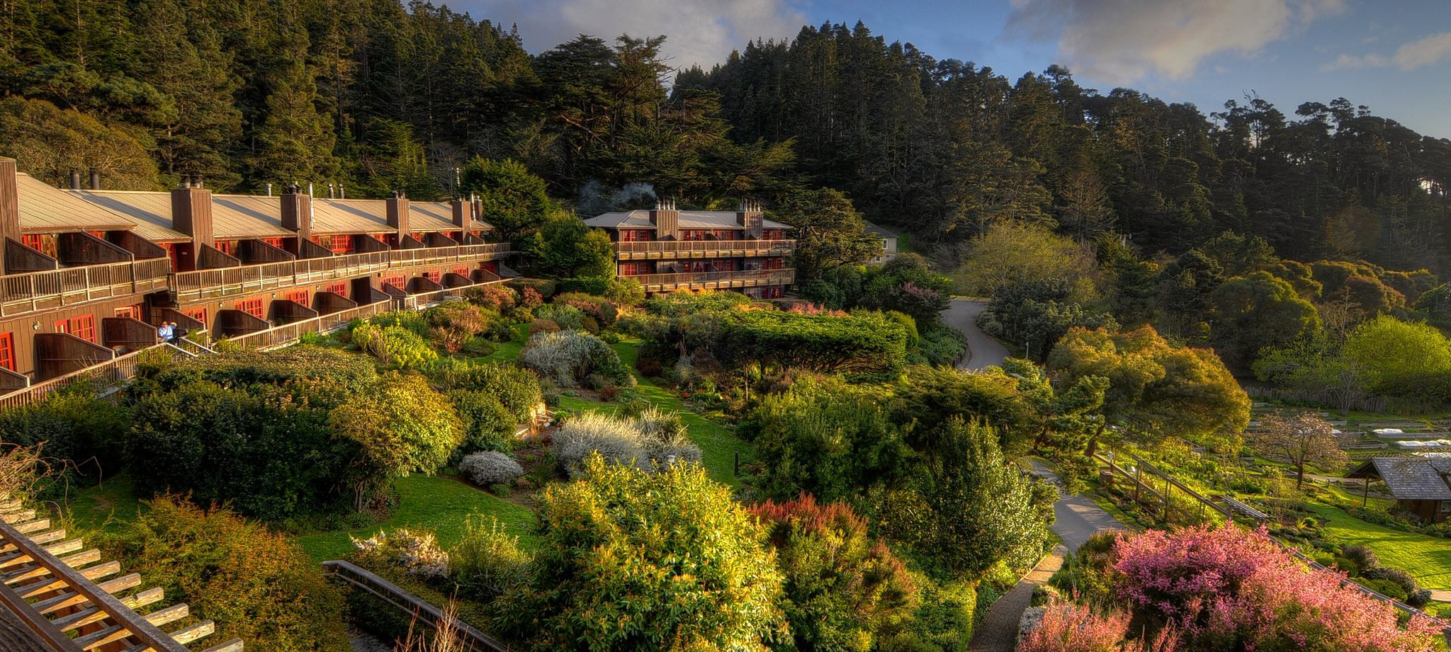 Plantbased Hotels