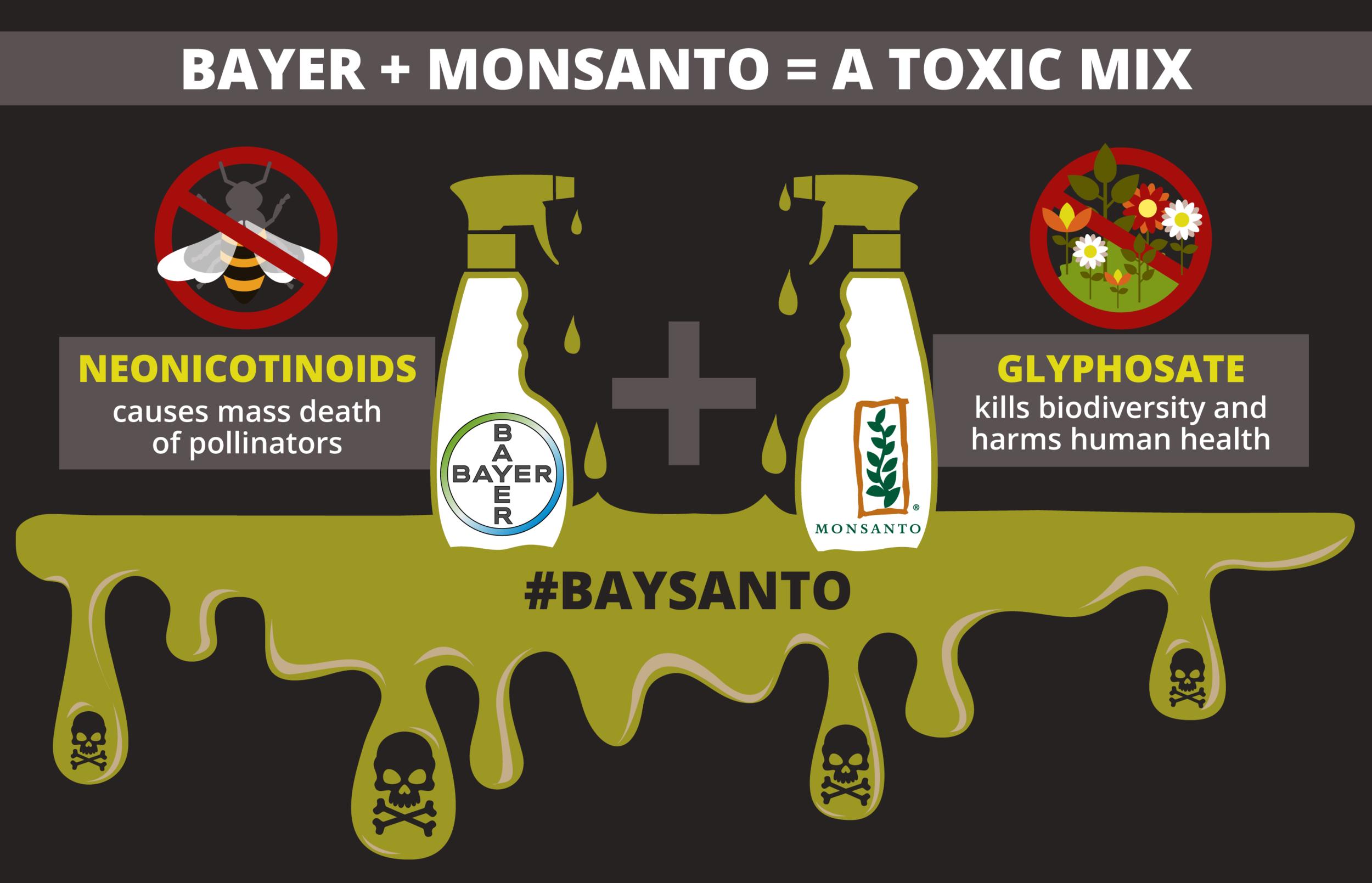 baysanto-infographics-01.png